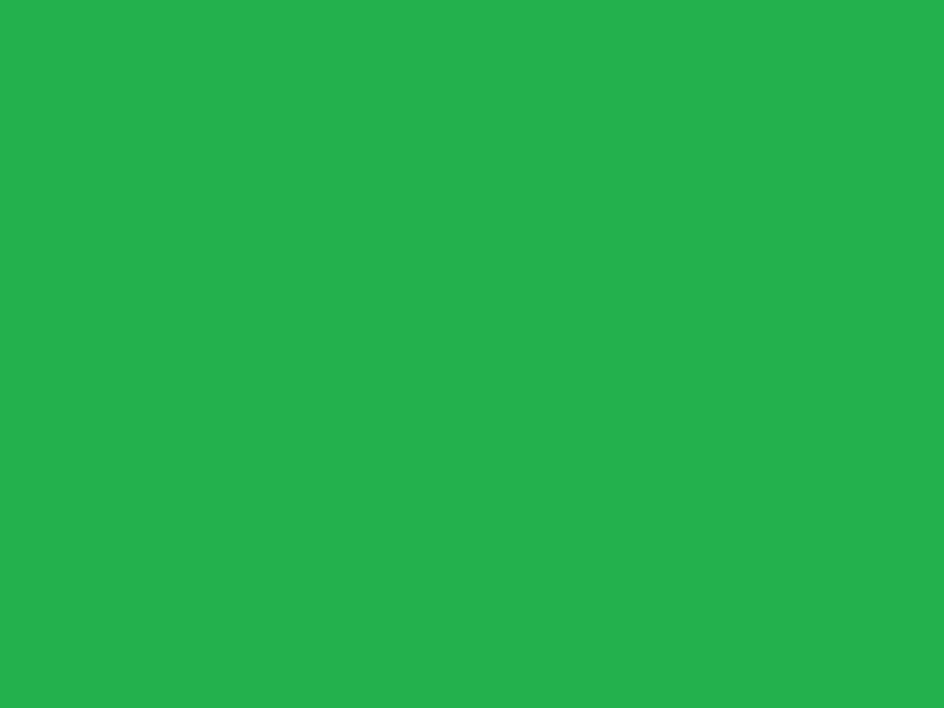 1920x1440 Solid Green Background