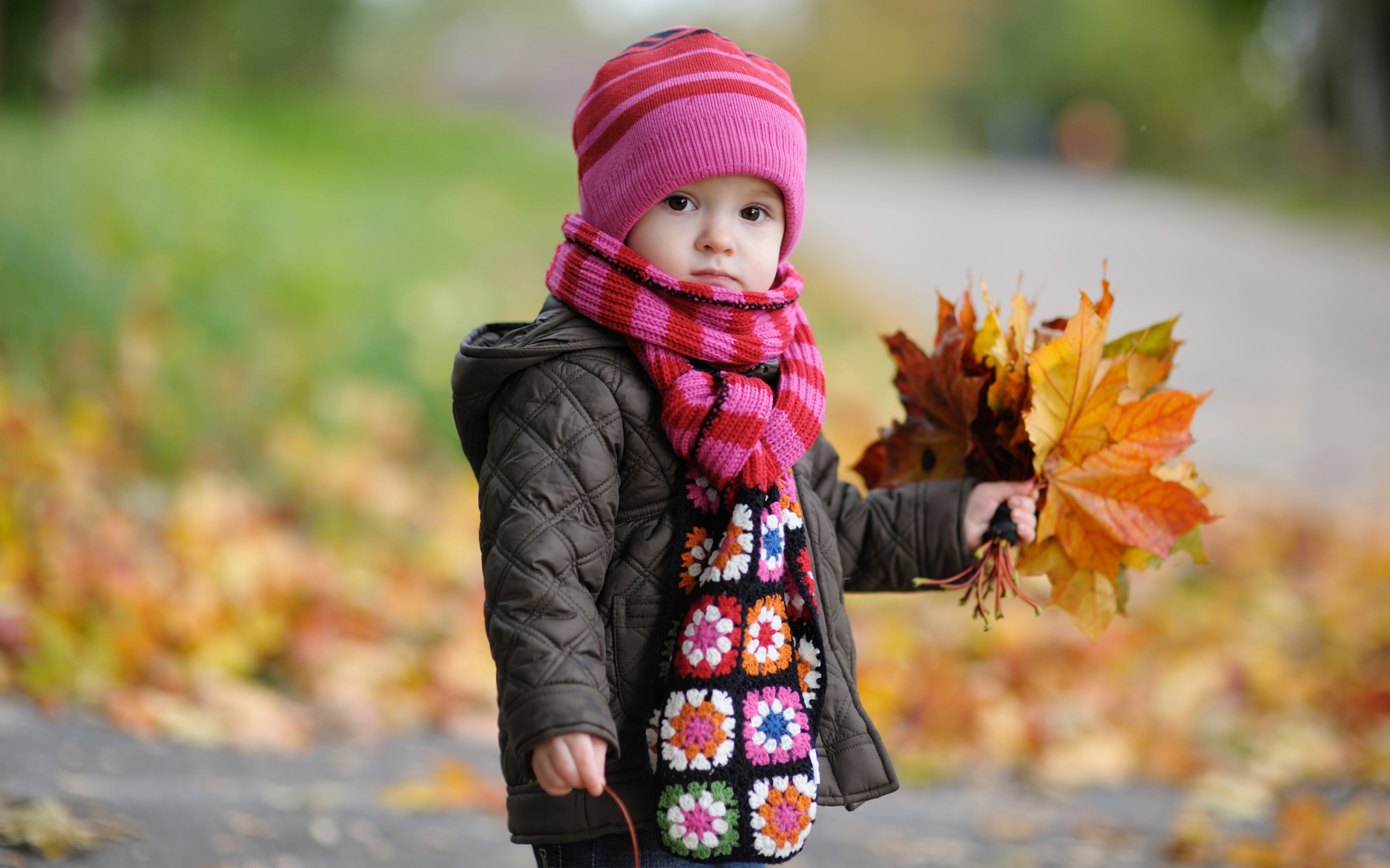 2880x1800 Cute Baby in Autumn Wallpapers | HD Wallpapers