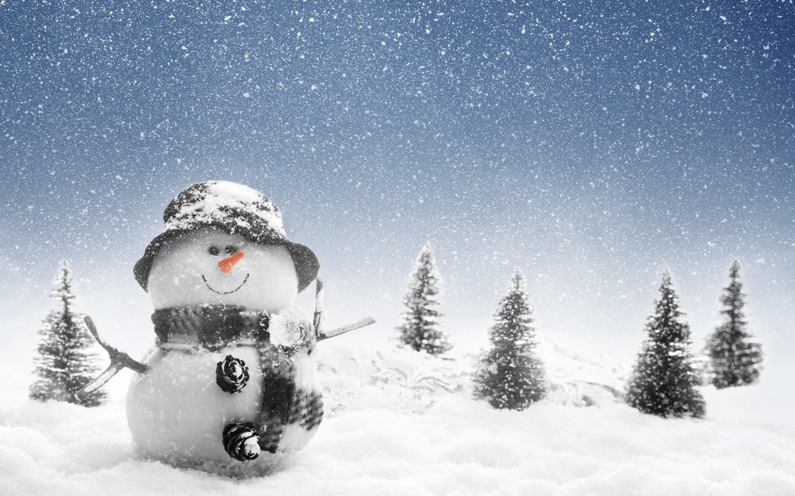 winter snowman wallpaper (61+ images)