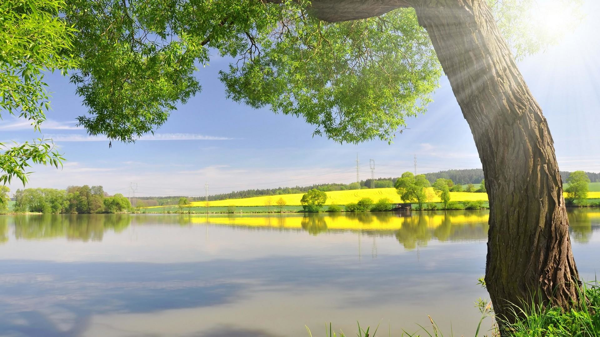 Bright sunny wallpaper 59 images - Sunny day wallpaper ...