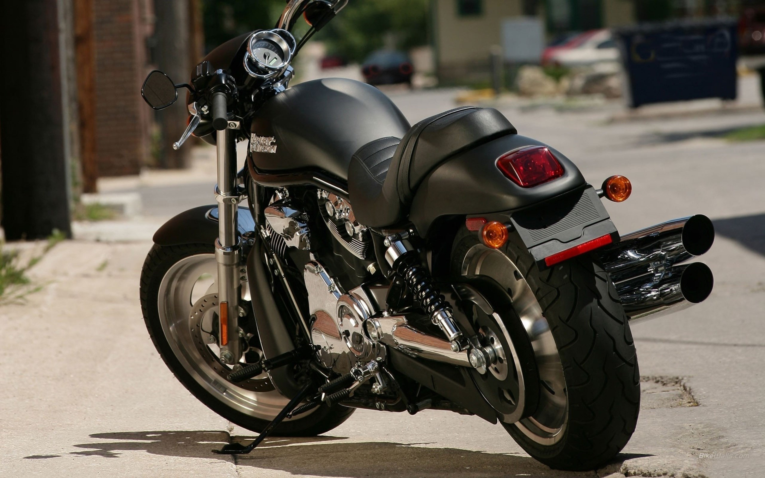 2560x1600 harley davidson back view bike wallpaper HD