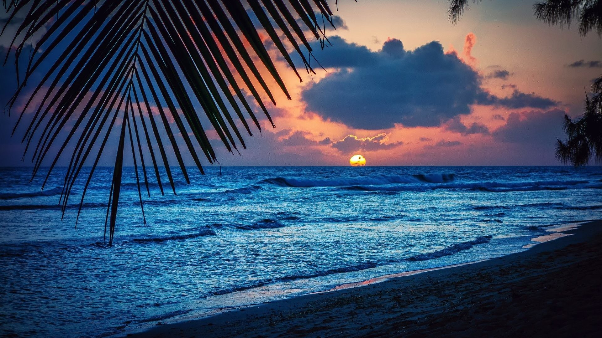 Caribbean wallpaper widescreen 61 images 1920x1080 sand clouds sunshades sea sky beautiful trees summer tropical palm beach caribbean white wallpaper tablet 1920x1084 voltagebd Choice Image