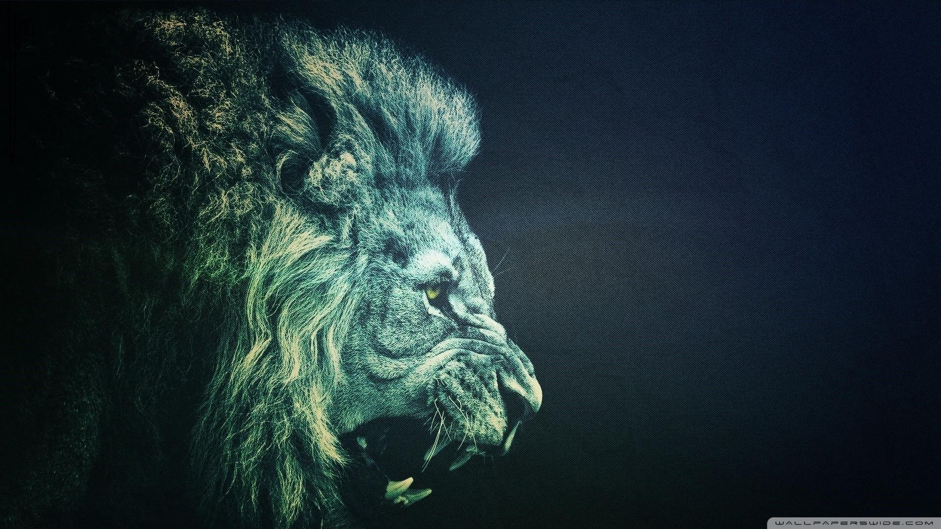 Roaring Lion Wallpaper 67 Images