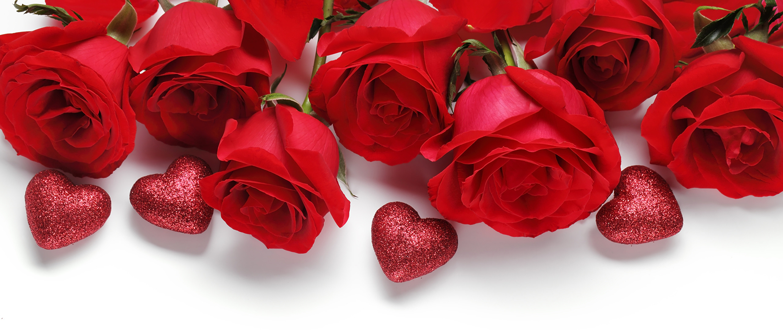 2560x1080 Wallpaper Valentine's Day Heart Red Roses Flowers White background