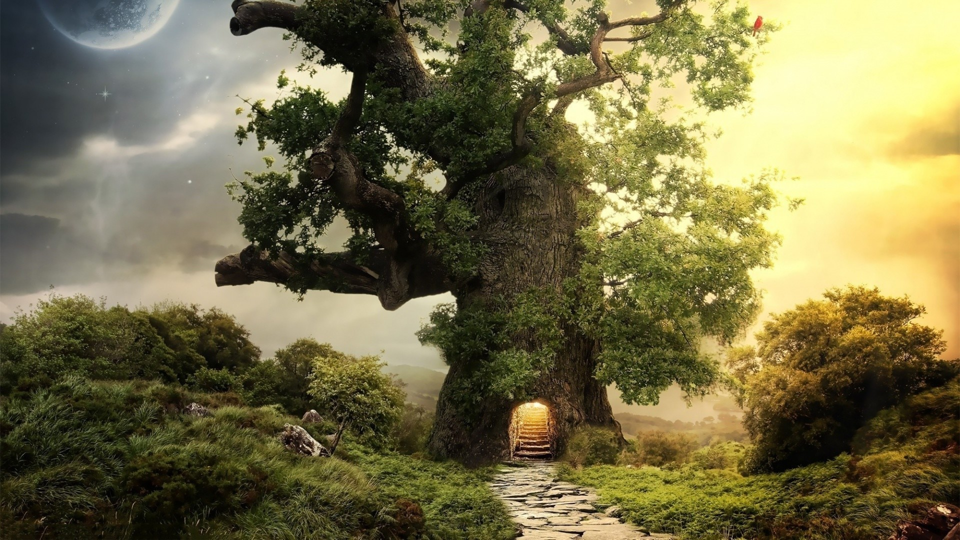 1920x1080 Free Online Fantasy Wallpapers | Full HD Desktop fantasy Description The  Wallpaper above is Fantasy house tree