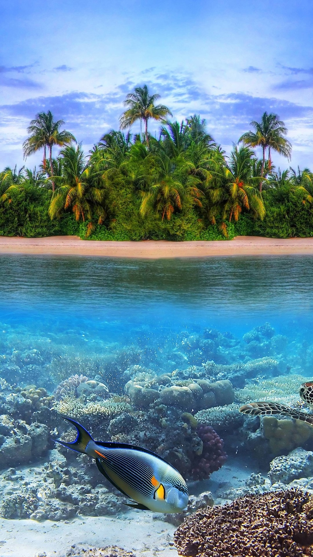 Tropical Island Wallpaper With Fish (49+ Images