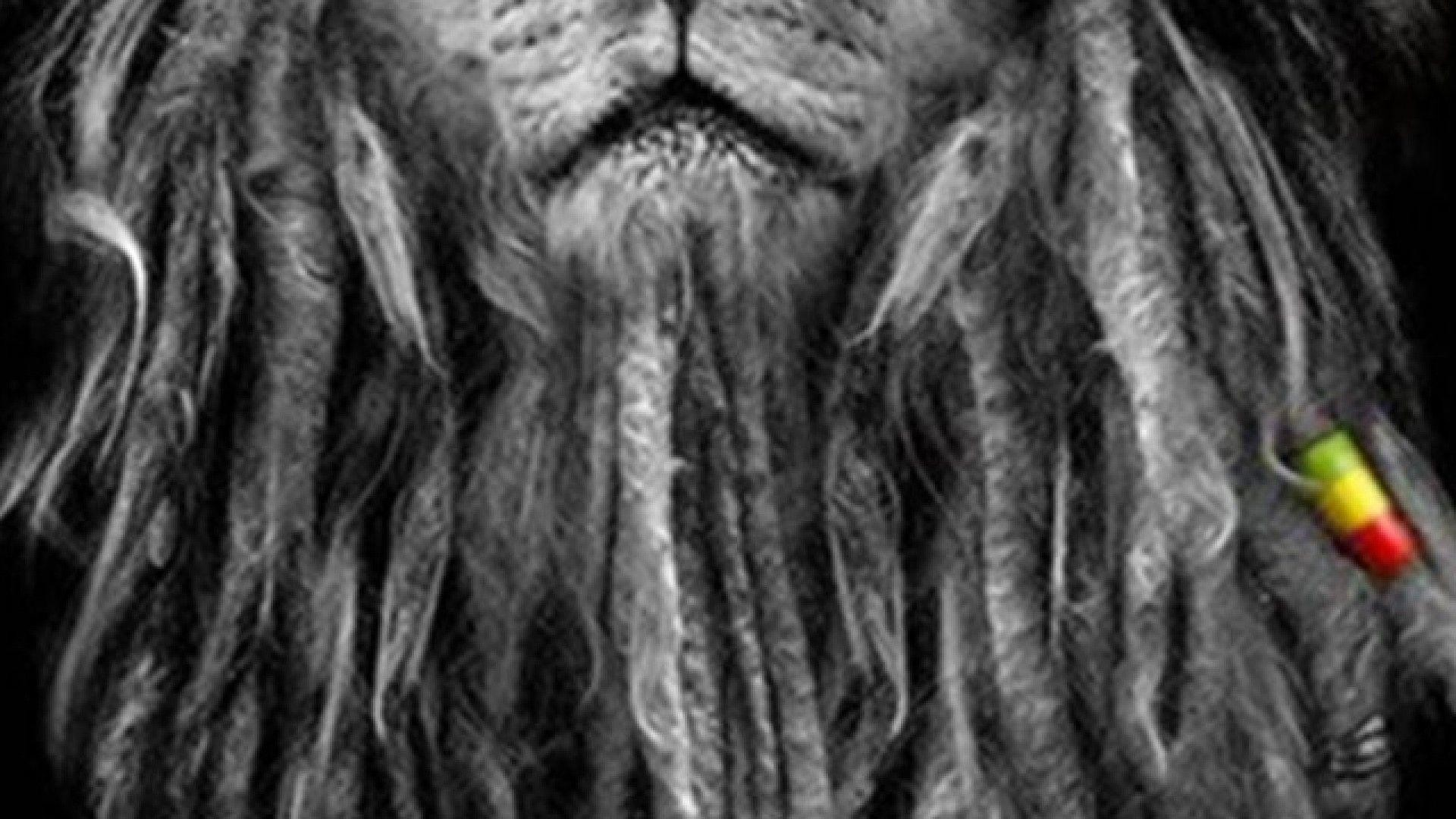 1920x1080 Wallpapers For Rasta Lion Iphone 5 Wallpaper