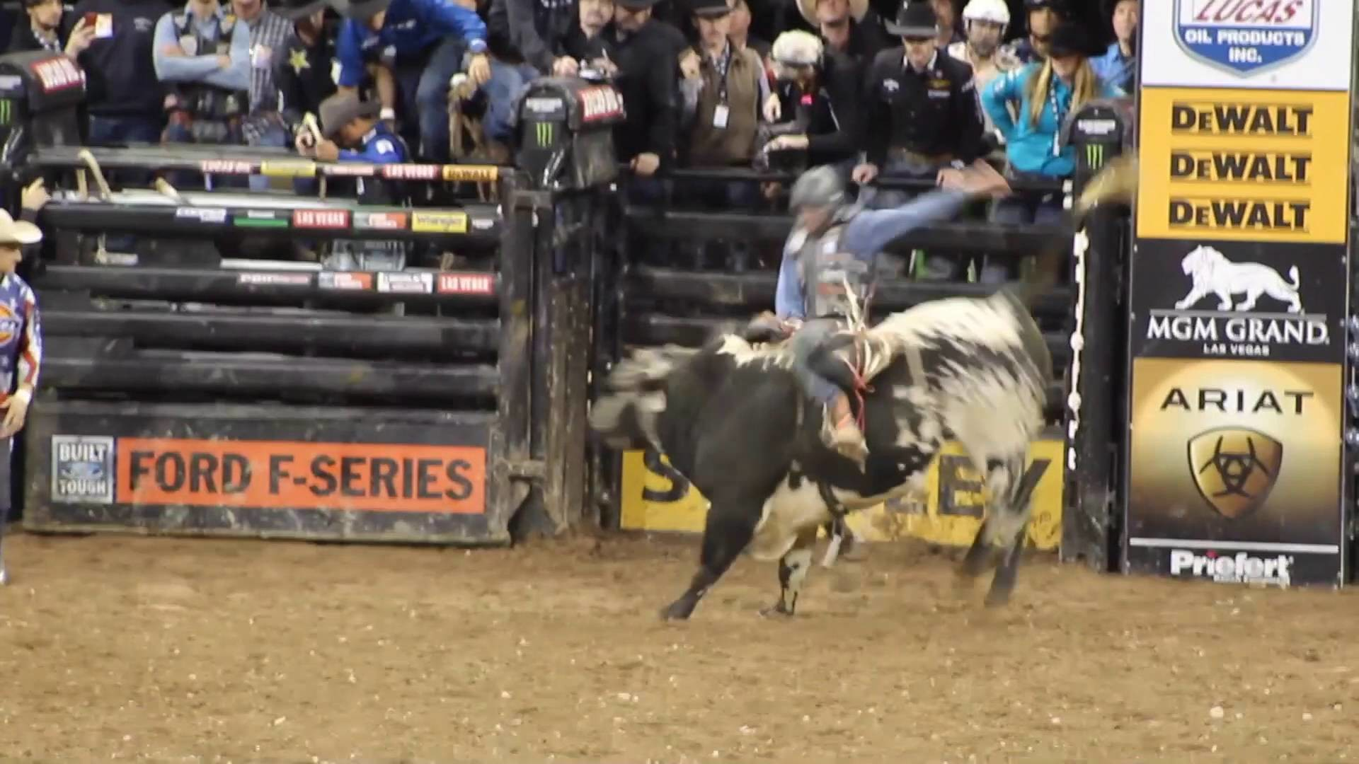 1920x1080 Noah goes to the PBR 'Buck Off At The Garden' New York Bull Riding 2016