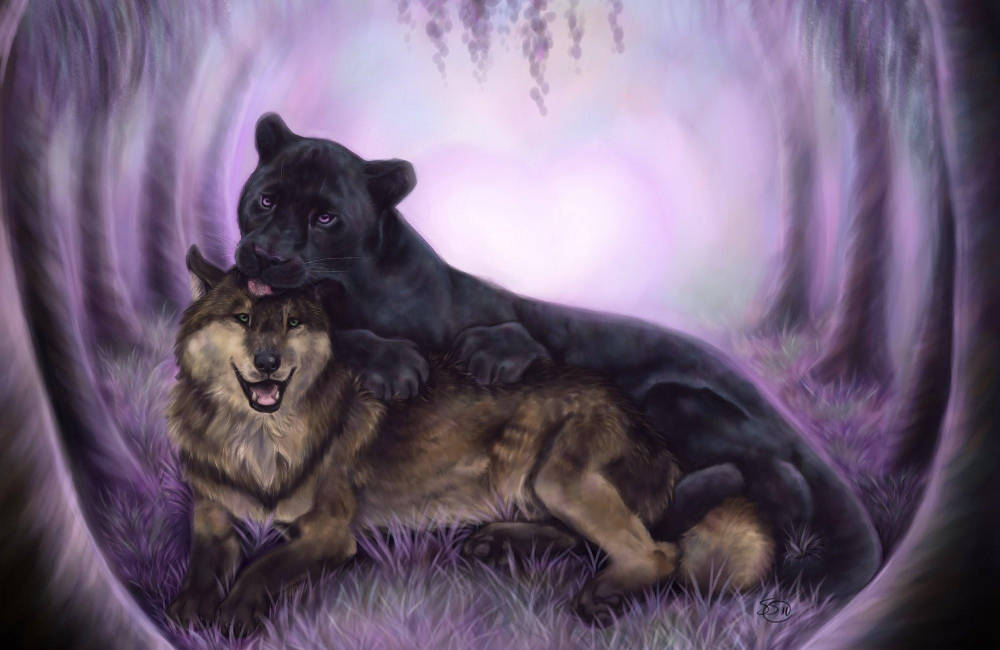 1998x1299 Black Panther Wallpaper With Blue Eyes Wolf Art Black Animal  Panther