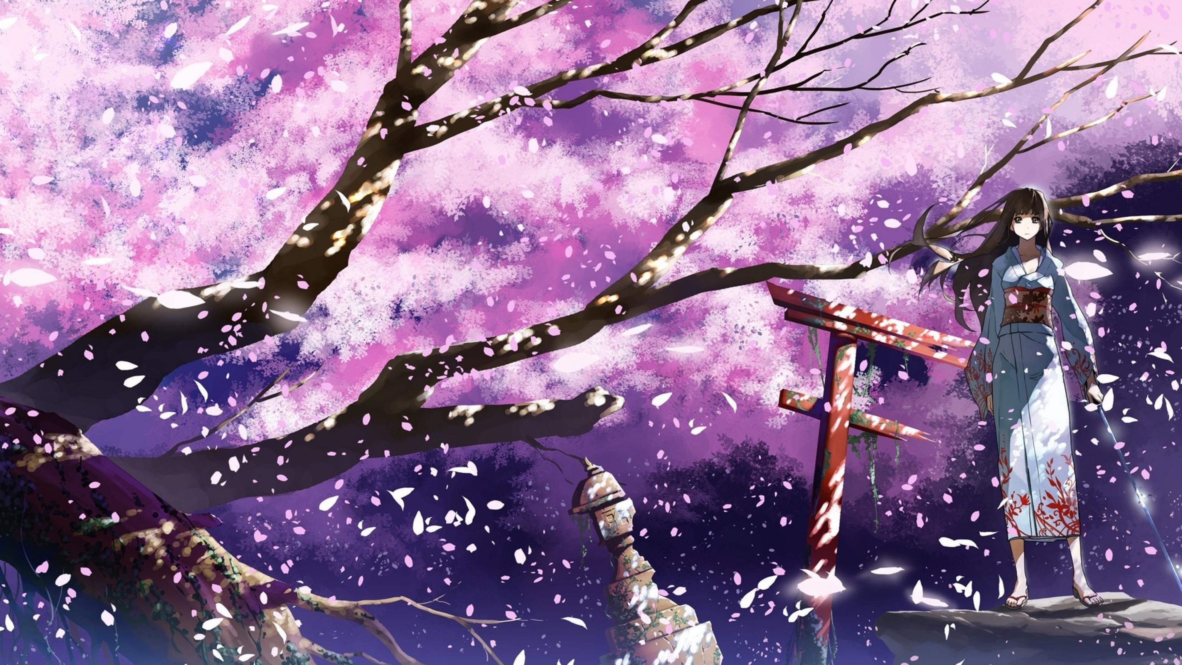 kimono sakura anime tree background desktop wallpapers nexus samsung galaxy
