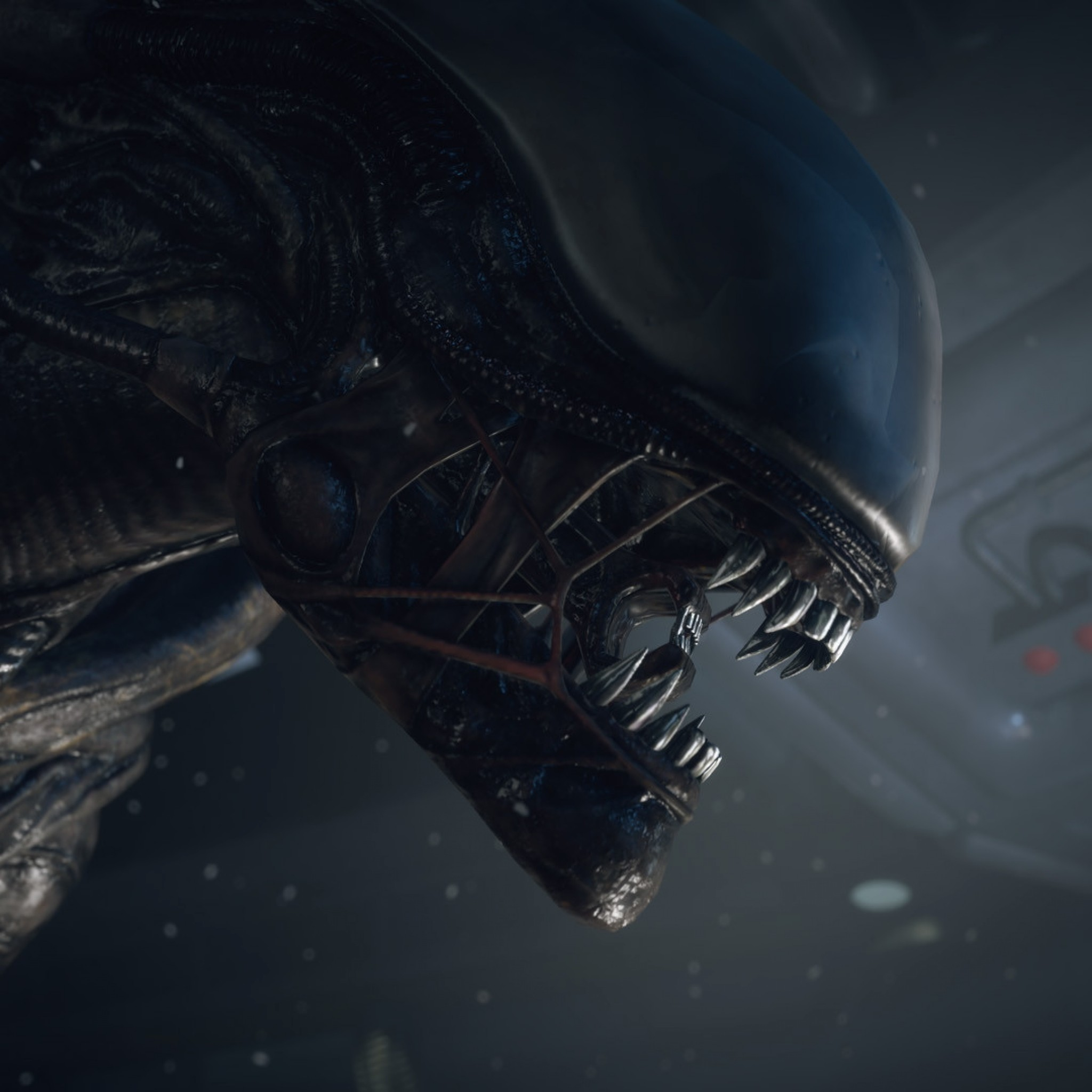 2048x2048 Preview wallpaper alien isolation, pc, playstation 3, playstation 4, xbox  360,