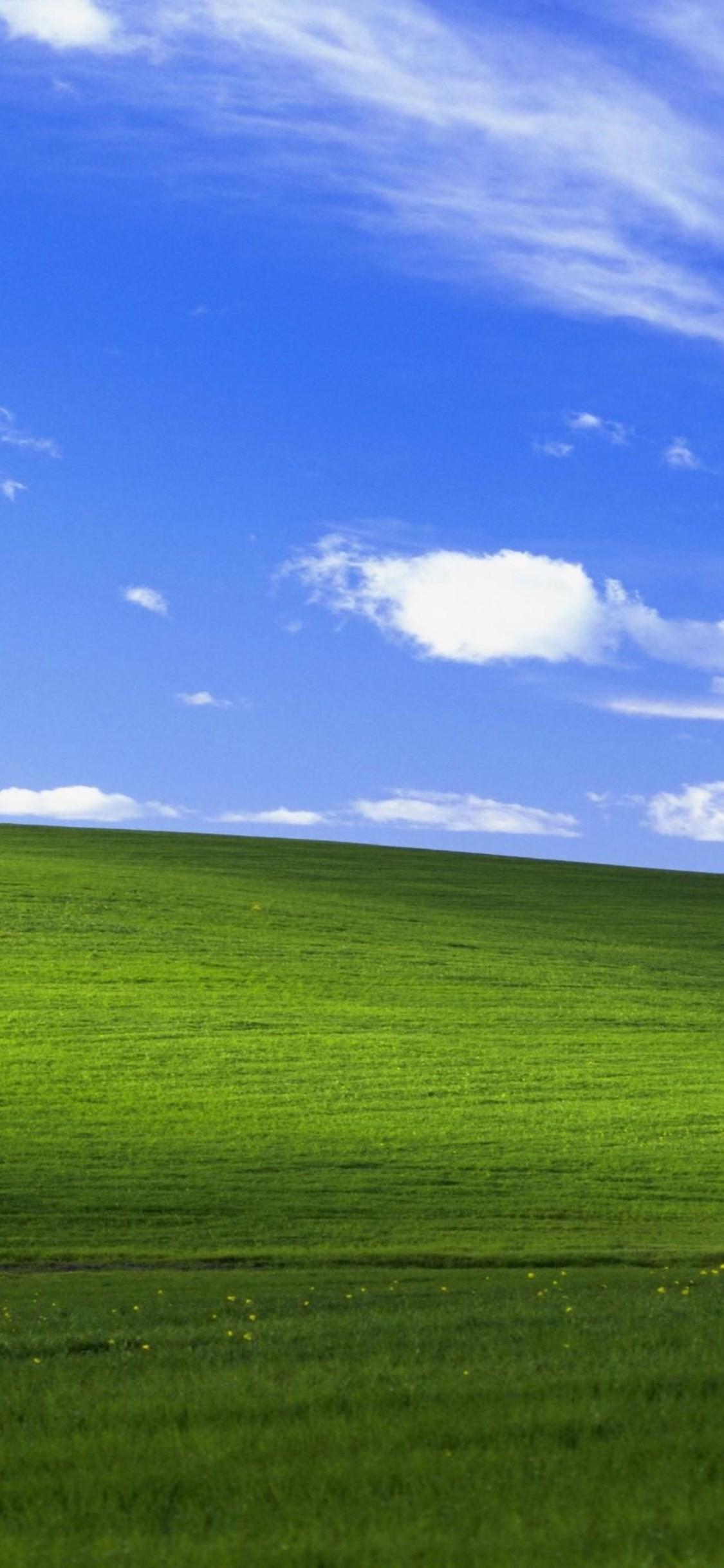 Windows Xp Wallpaper Bliss 54 Images