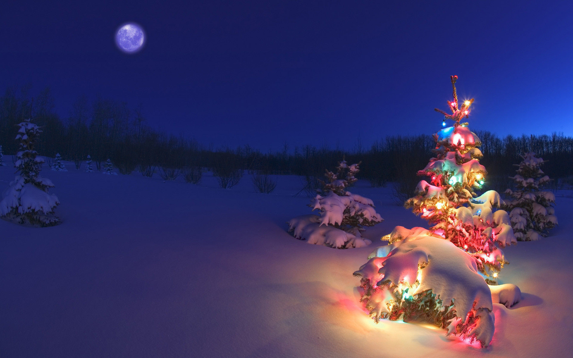 Holidays Wallpaper 70 Images