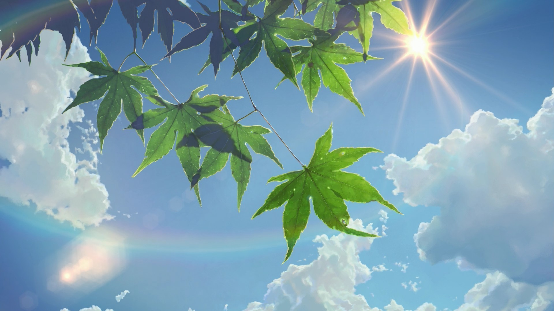 1920x1080 summer, Sunlight, Leaves, The Garden Of Words, Sun Rays, Clouds, Makoto  Shinkai Wallpapers HD / Desktop and Mobile Backgrounds