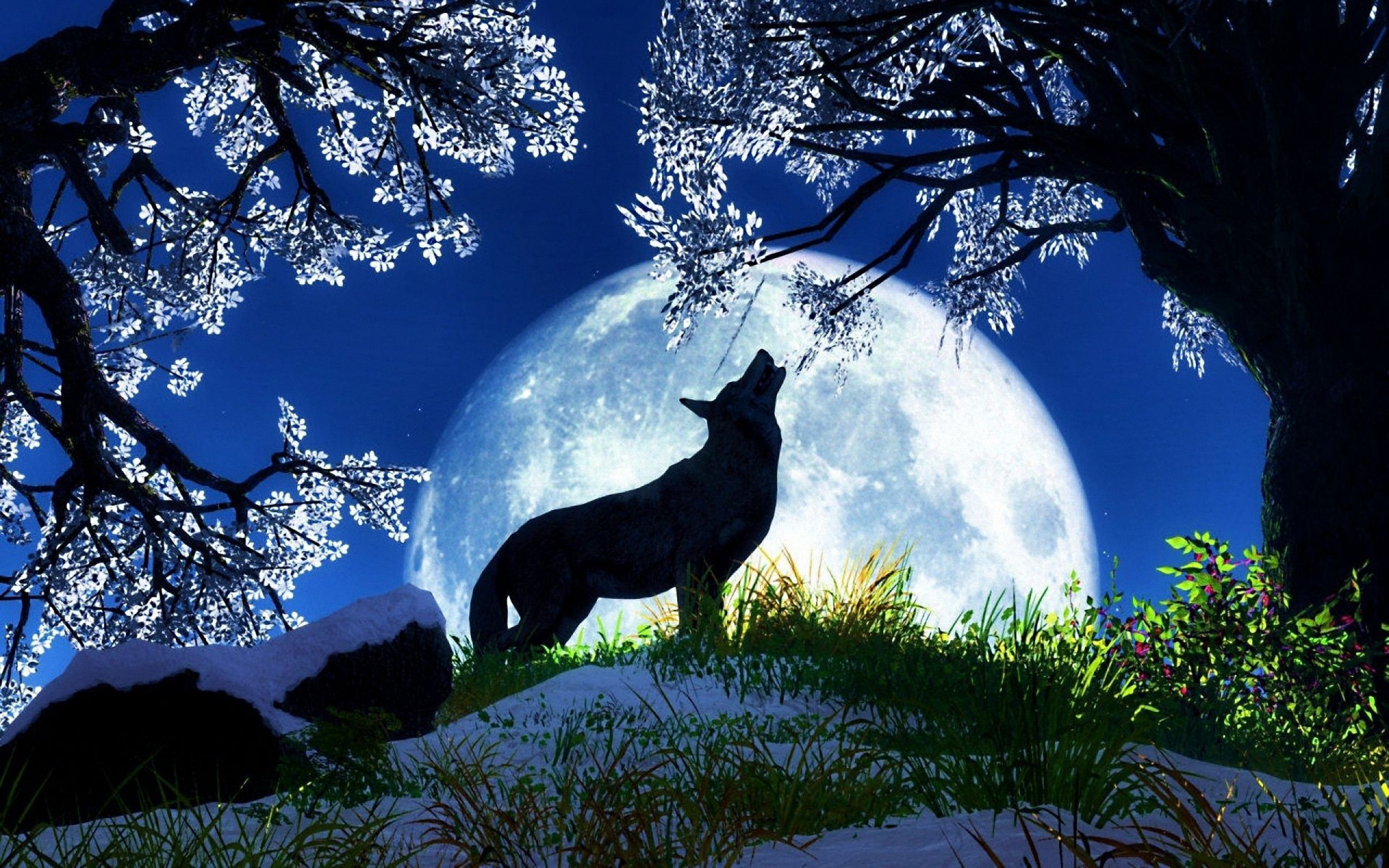 2560x1600 Howling Wolf Wallpapers Images