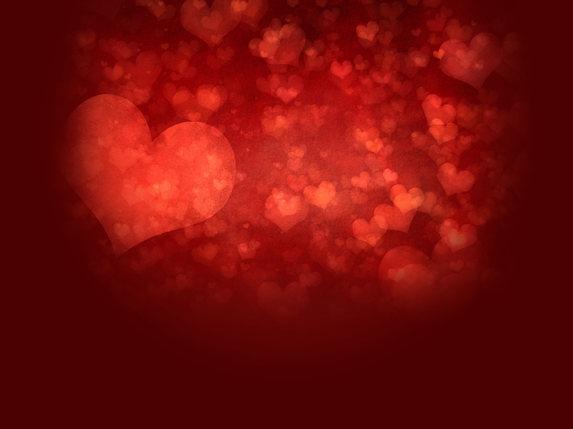 360 Free Valentines Day Photoshop Brushes Patterns and