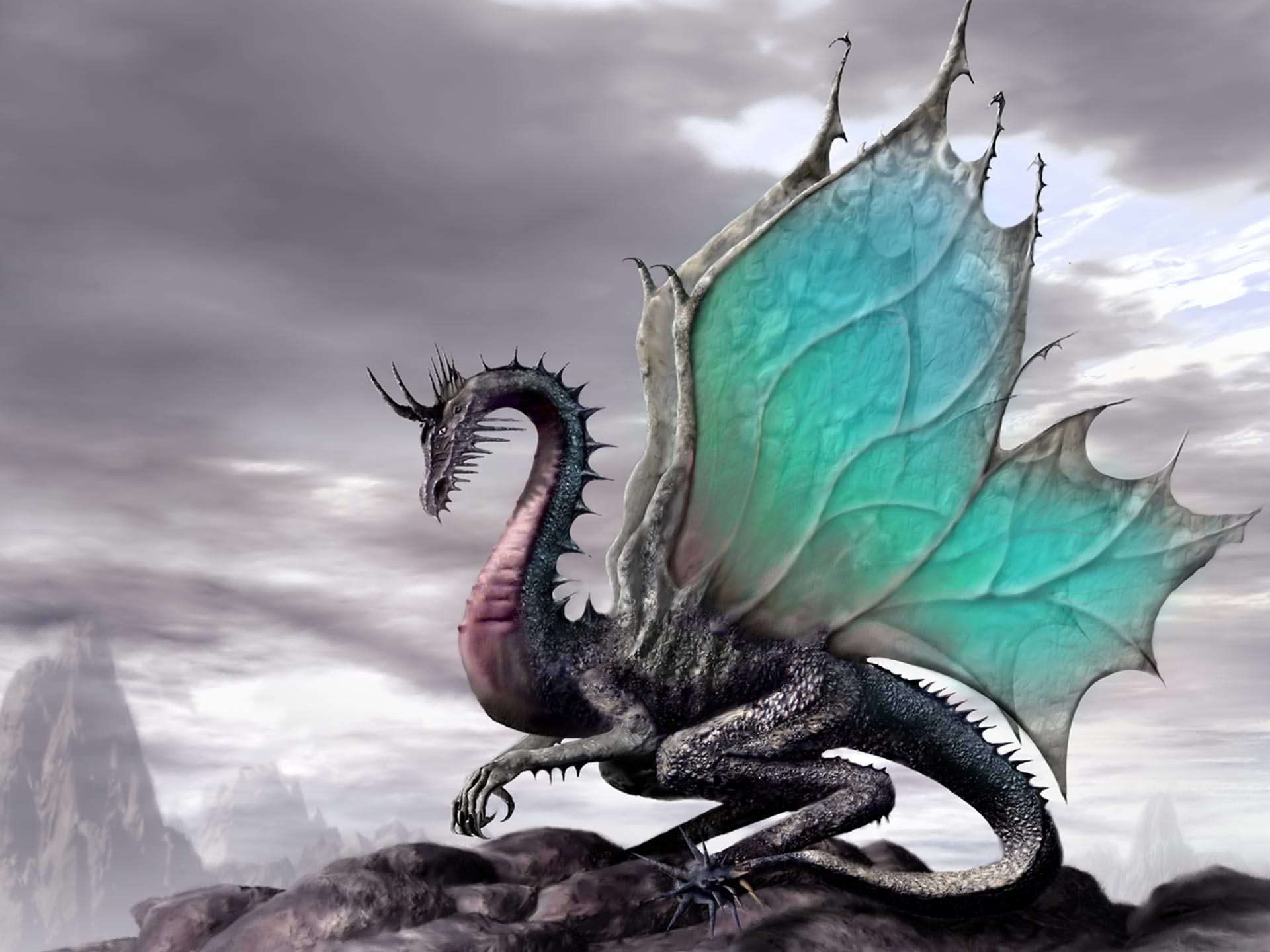 1920x1440 Beautiful Colored Wallpaper of Dragon