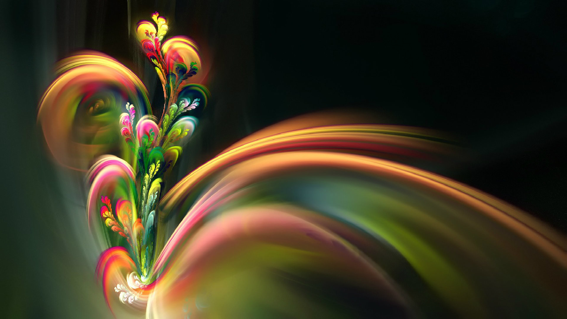 1920x1080 Beautiful Flower Hd Desktop Background Follow9 Com