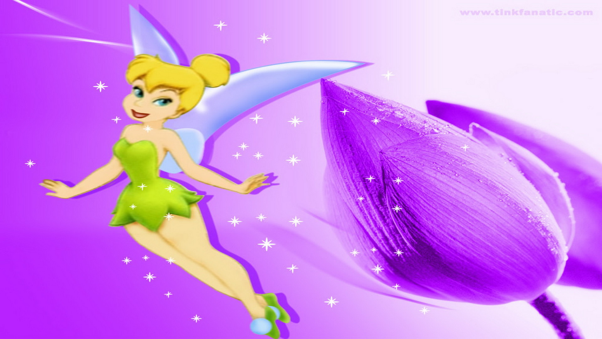 tinkerbell live wallpaper 65 images
