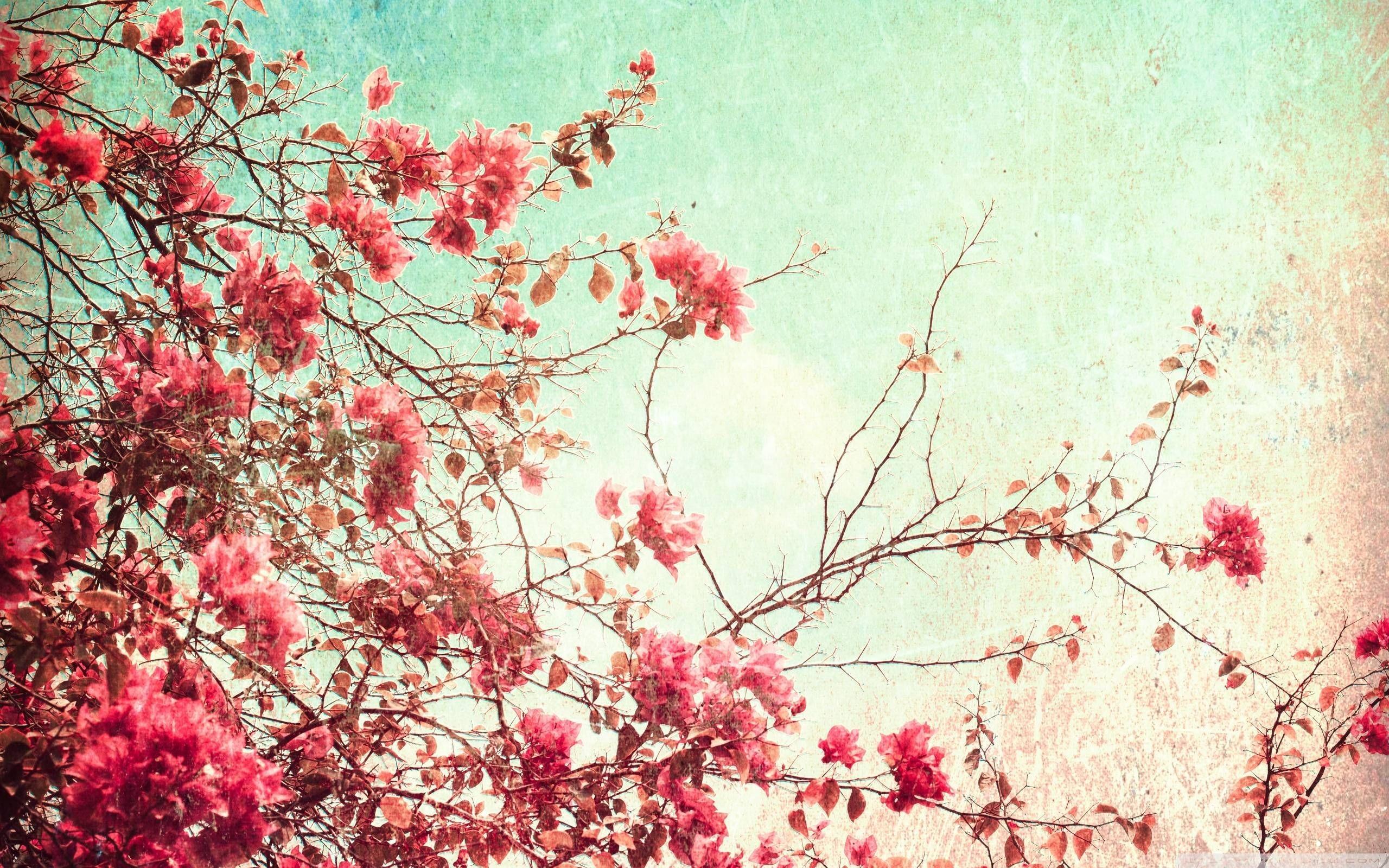Retro Flower Wallpaper 43 Images