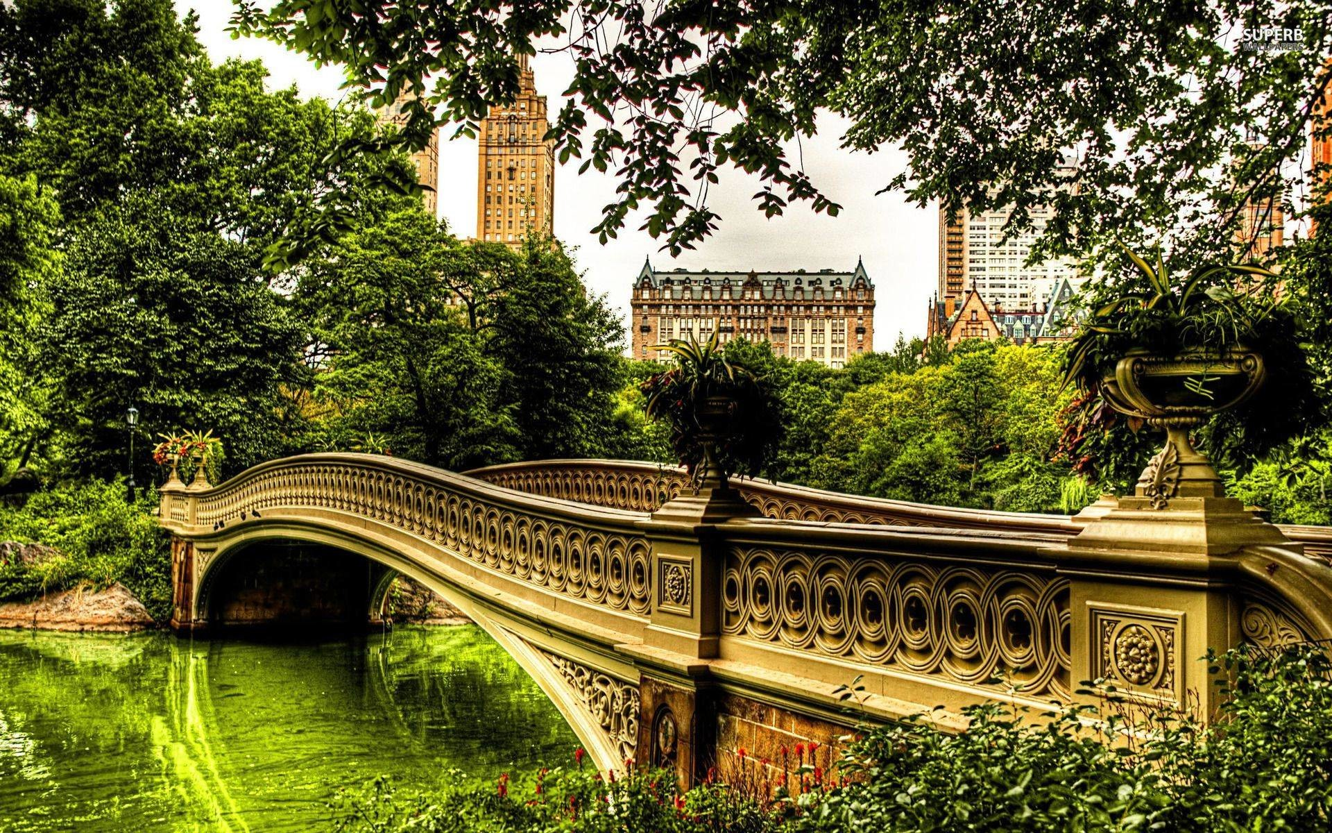 1920x1200 Bow Bridge Central Park Desktop Background | Wallpaper Century