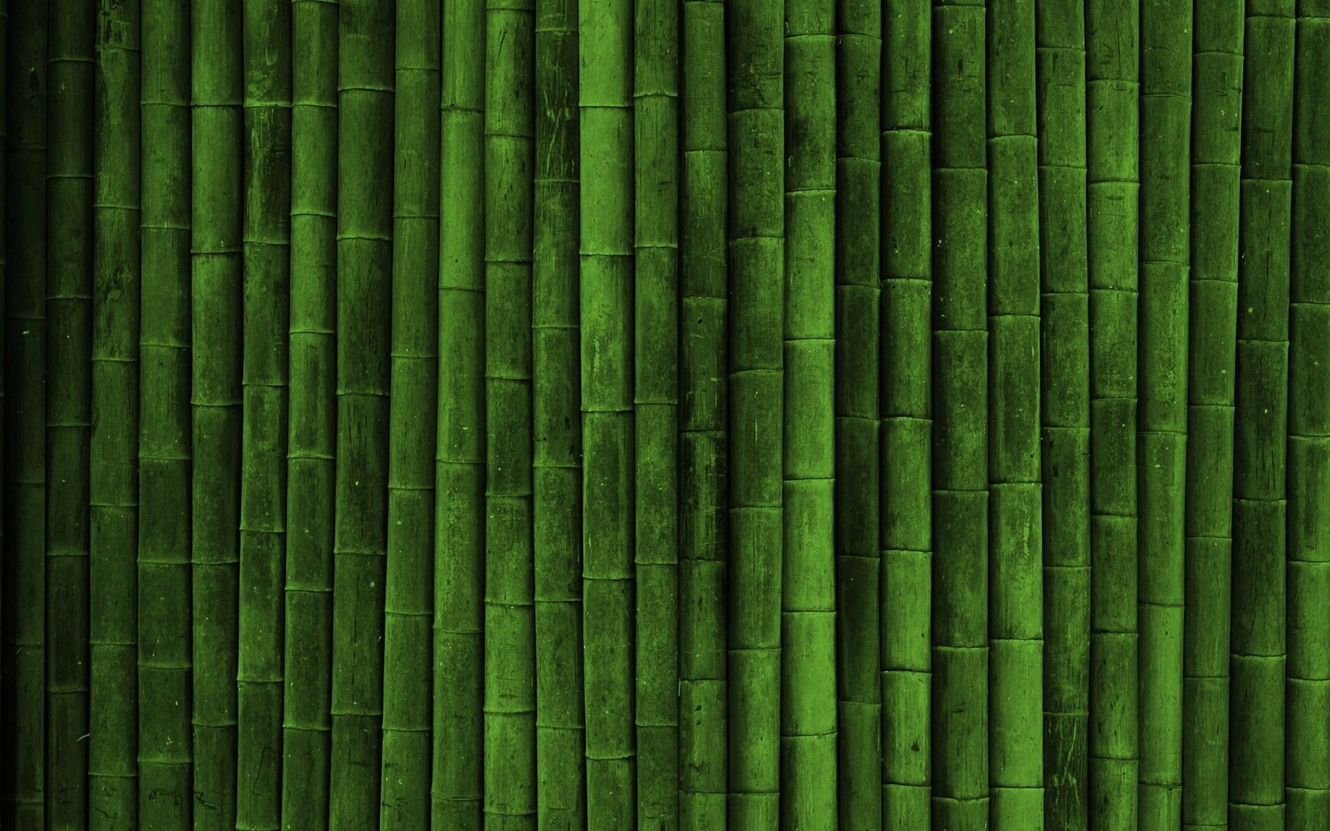 1920x1200  free bamboo background  for iphone 5s
