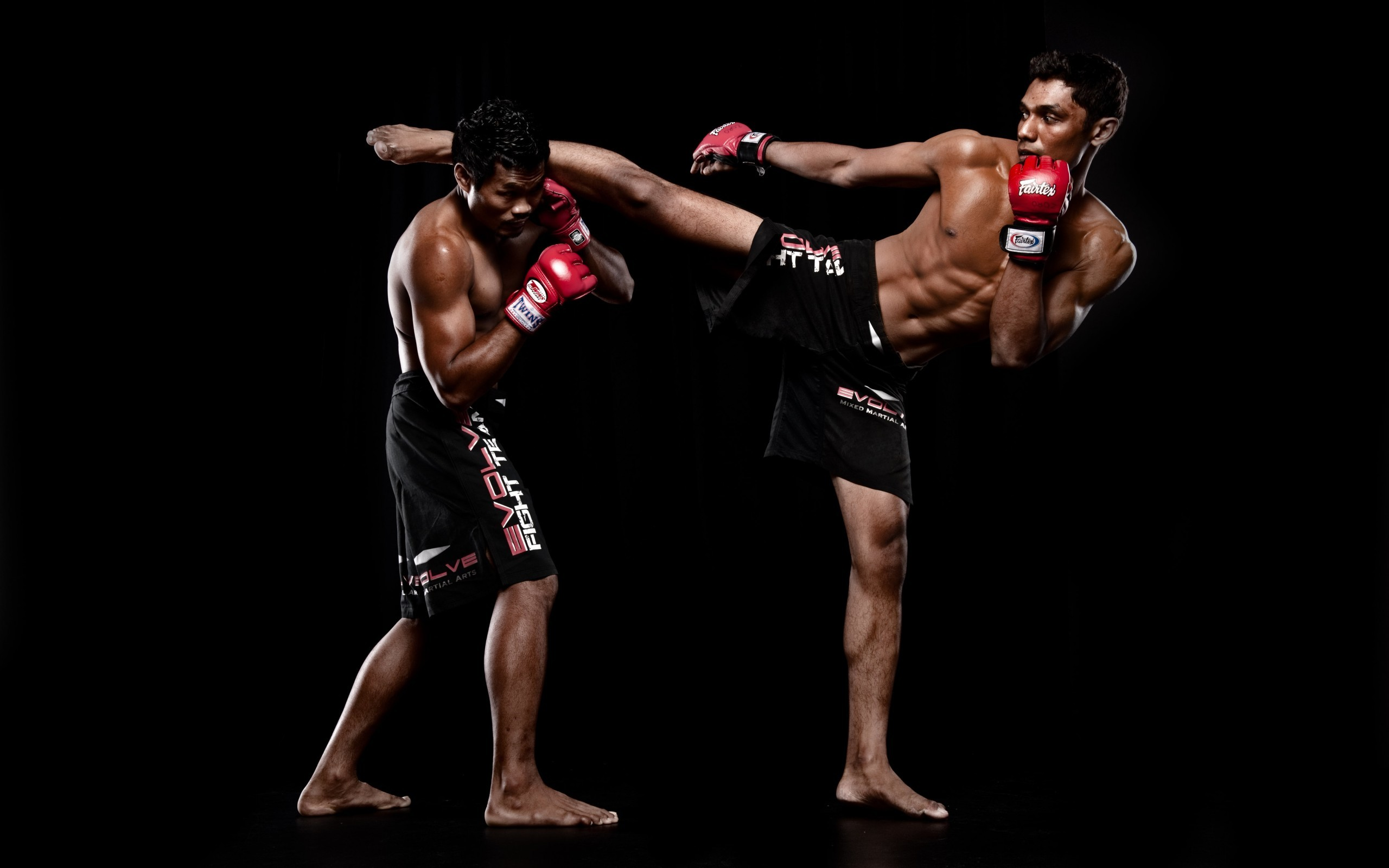2560x1600 Mixed Martial Arts HD Pictures 04401