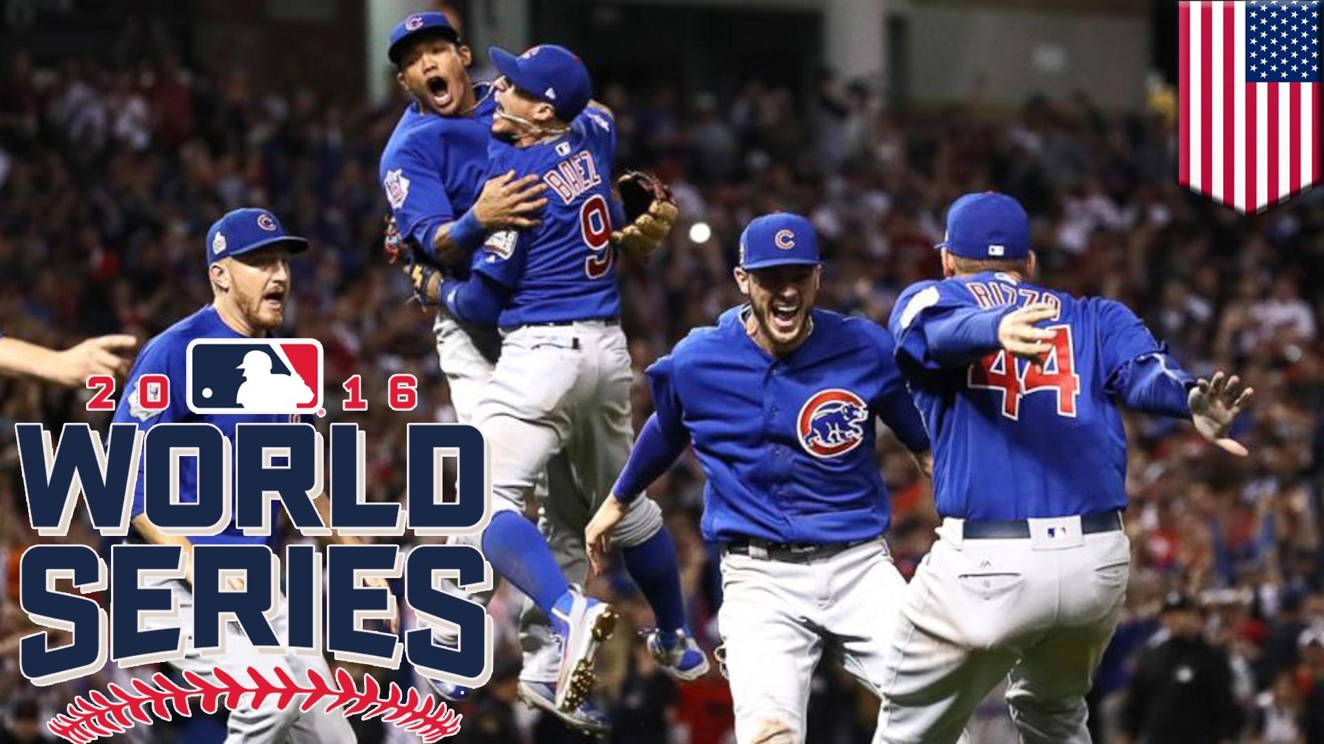 Cubs Wallpaper Screensavers 71 Images