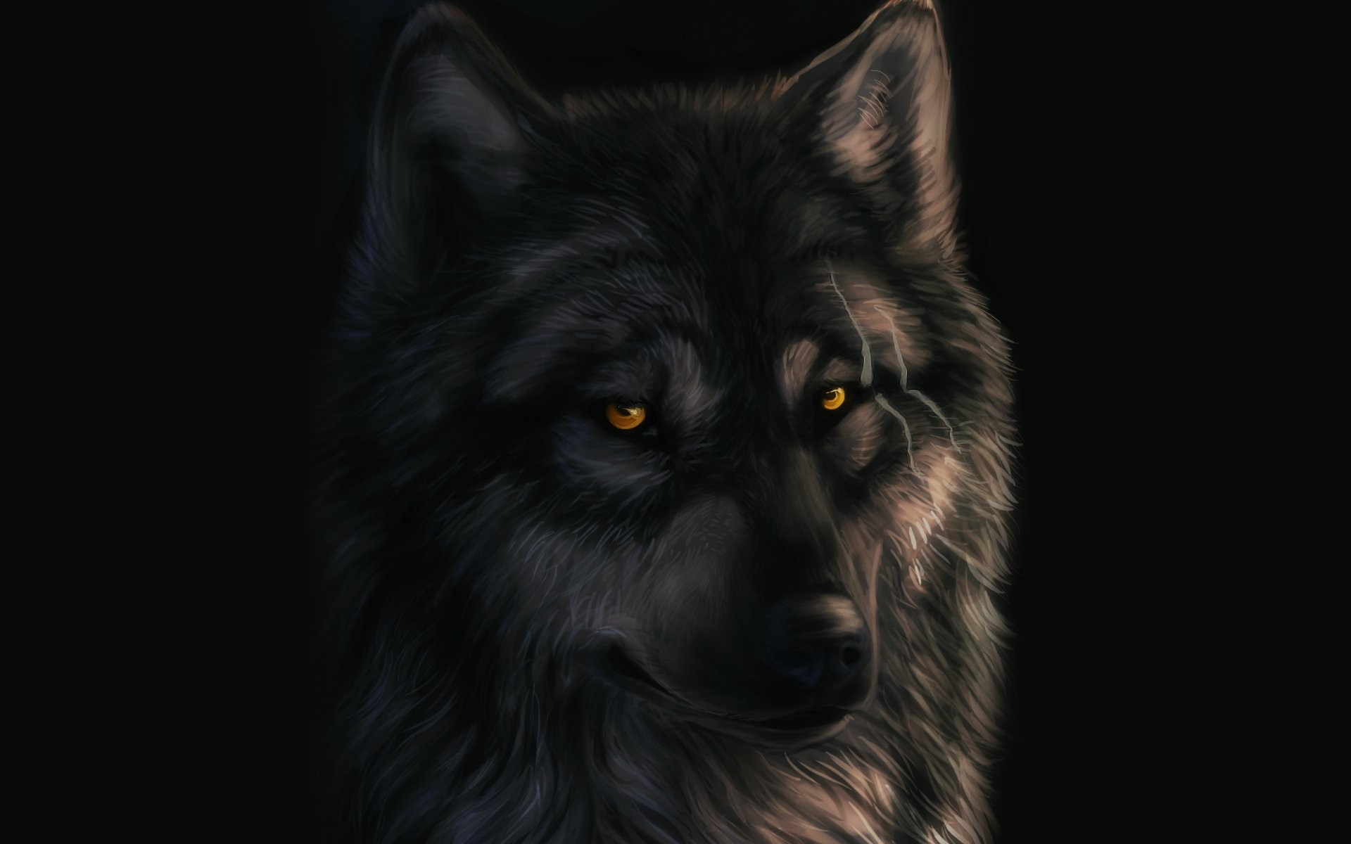 Dark Wolf Wallpaper (63+ images)