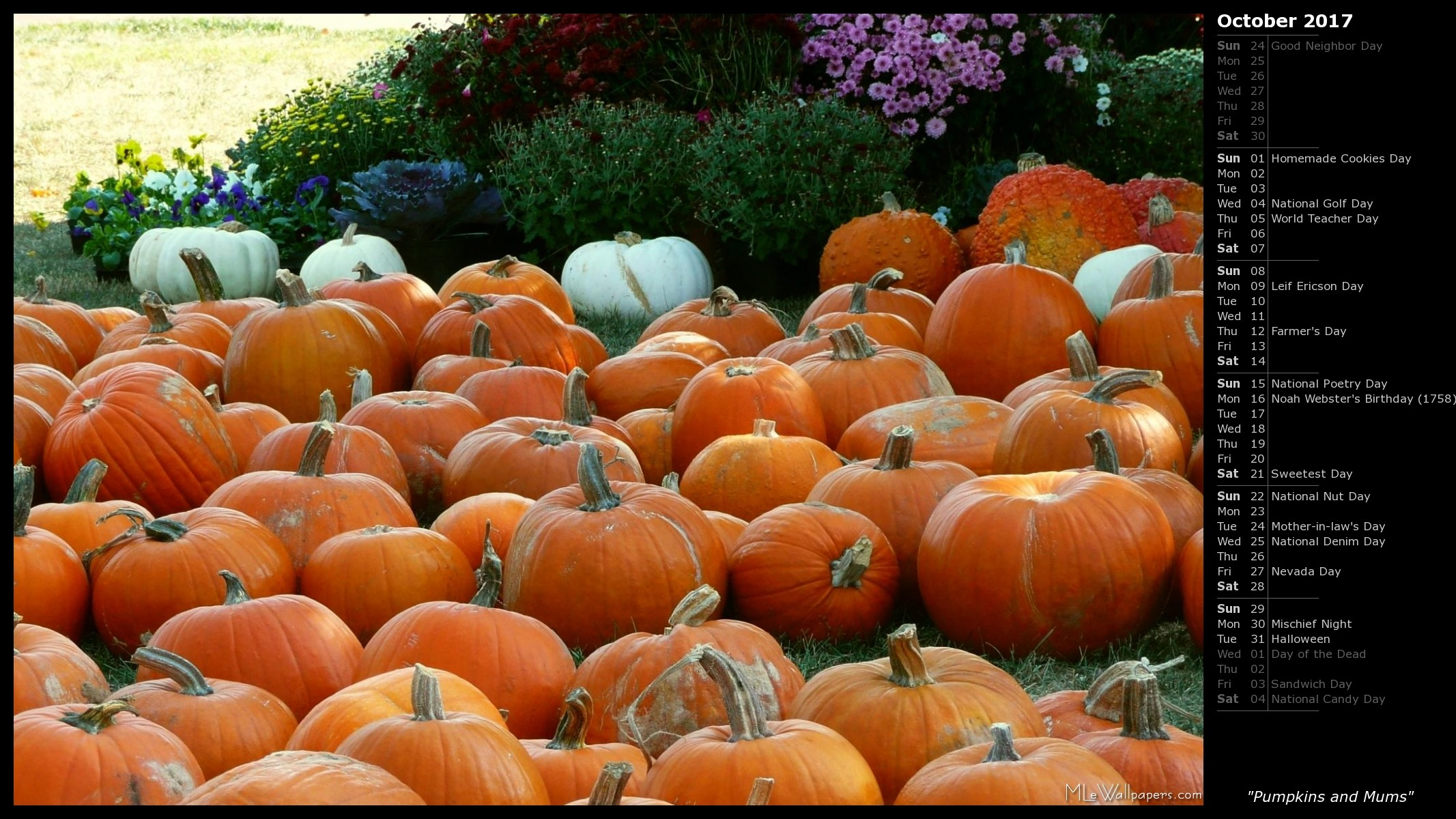 1920x1080 Happy Halloween Pumpkins Wallpaper HD