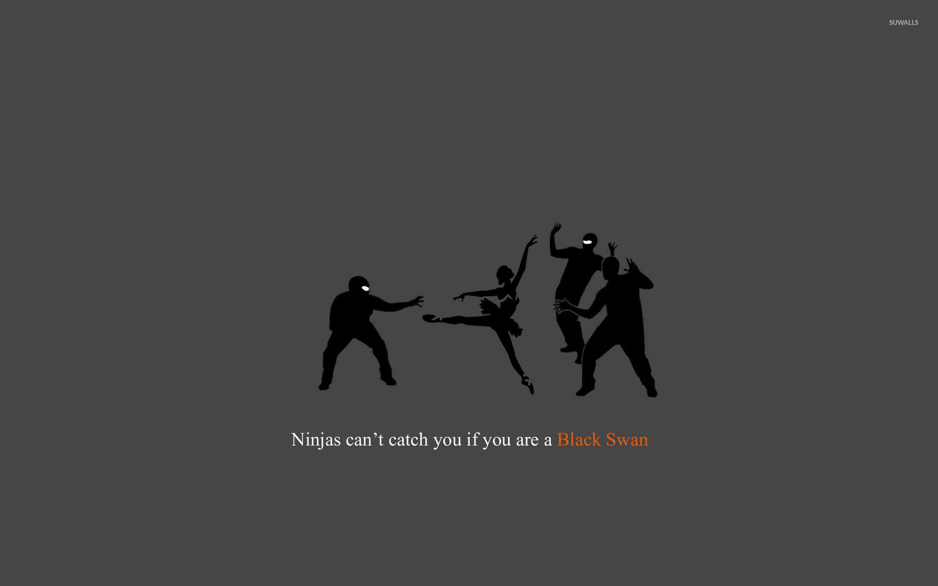 1920x1200 Ninjas can't catch you if you're a Black Swan wallpaper