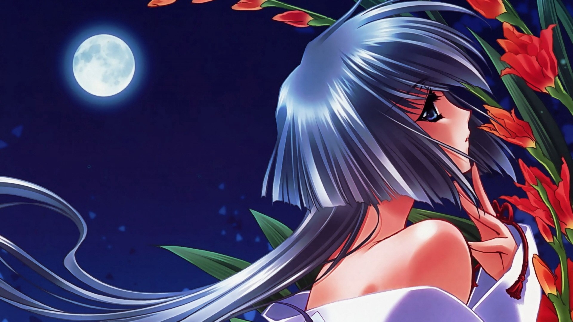 1920x1080  Wallpaper girl, pin-up, moon, flowers, night