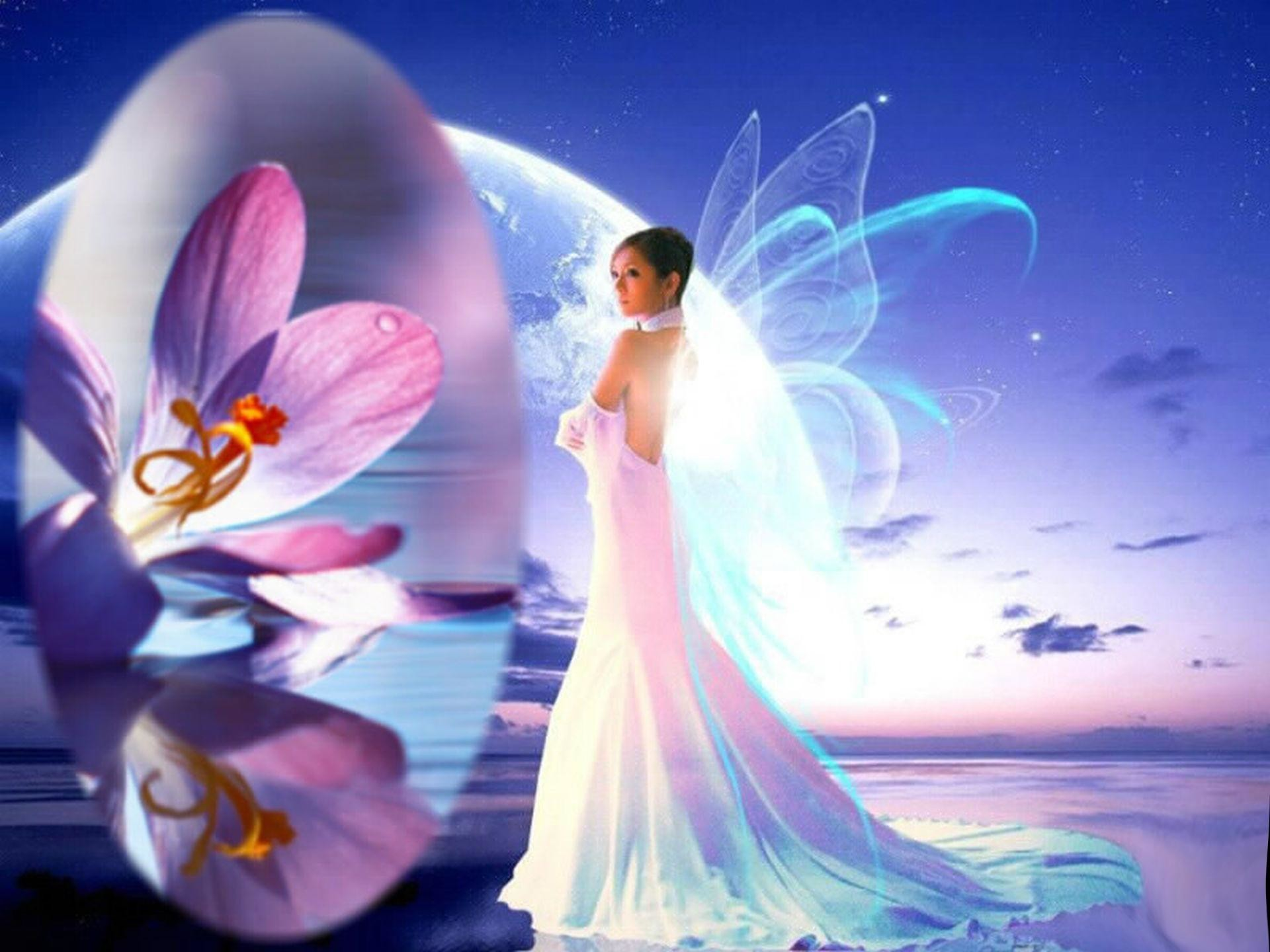HD Fairy Wallpaper (62...