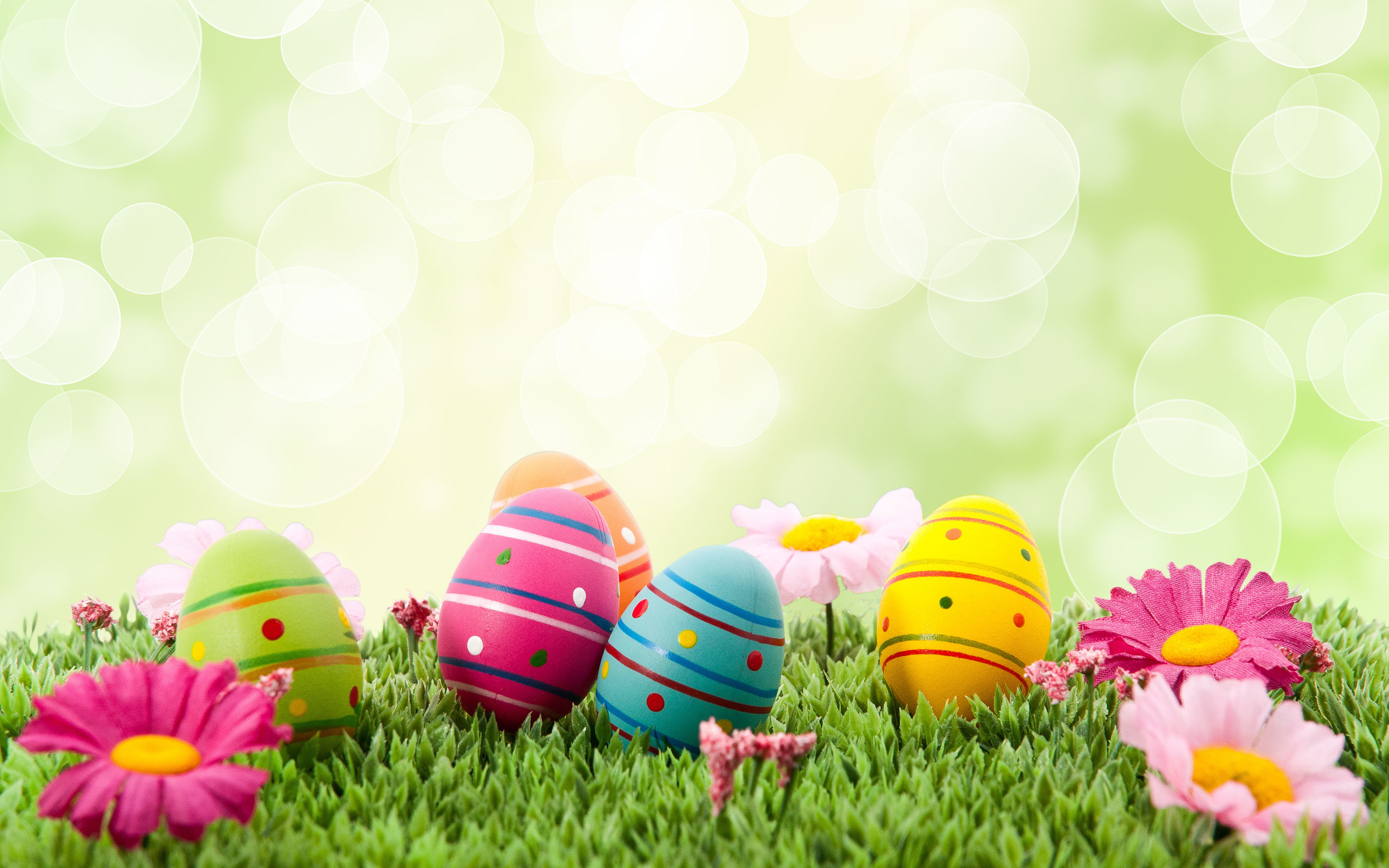 2880x1800 easter images eggs free. Â«Â«