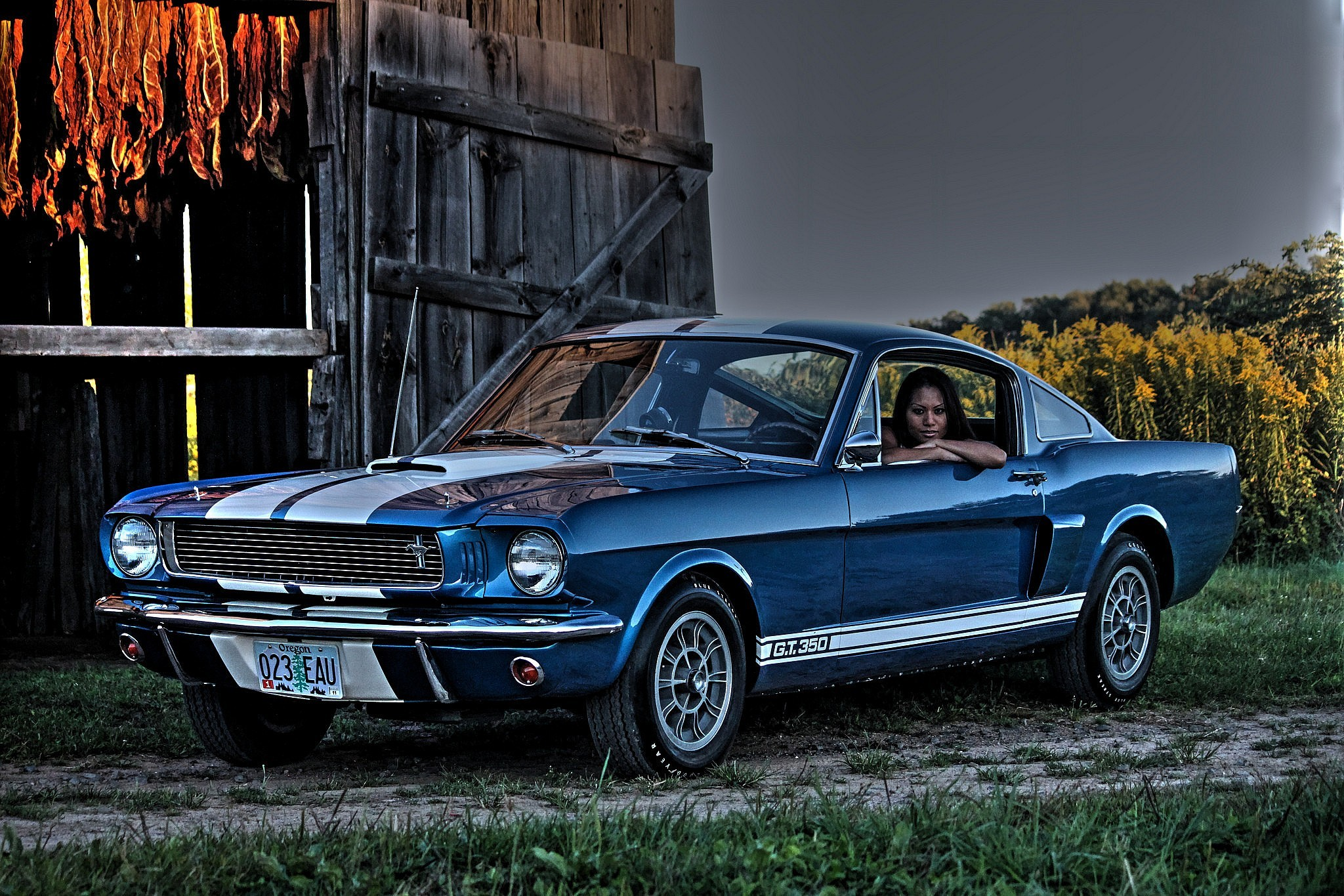 Shelby mustang wallpaper 75 images - Mustang shelby ...