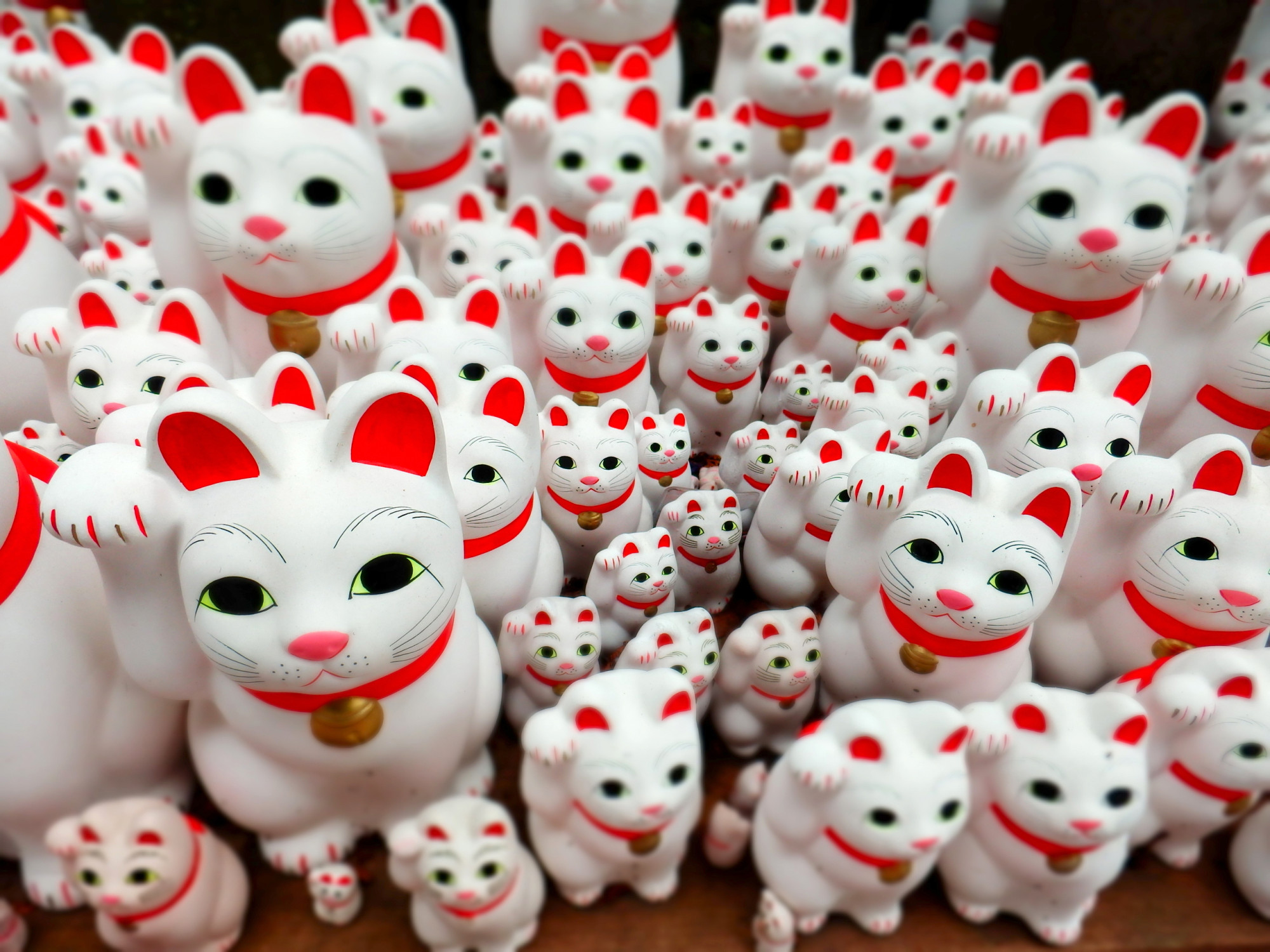 2000x1500 Manekineko (lucky cats) are popular with tourists.