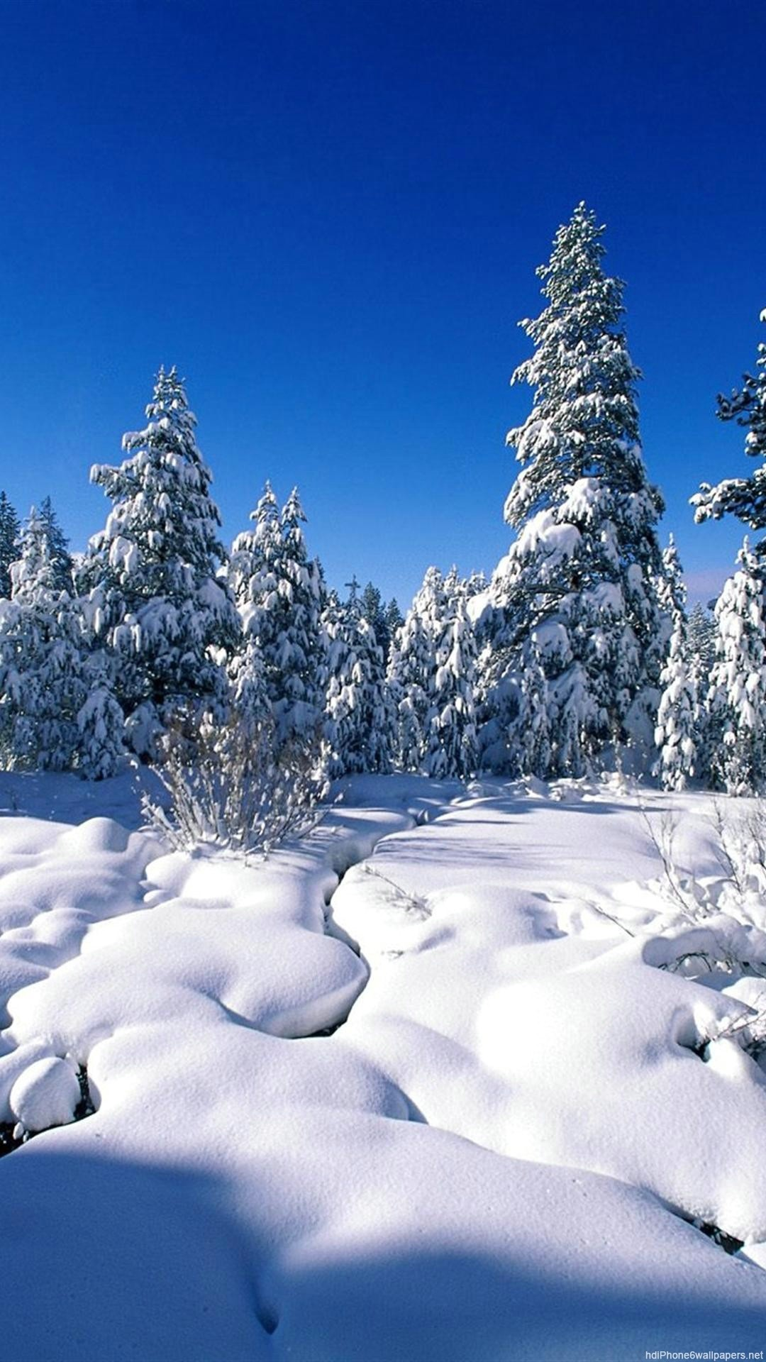 Winter Wallpaper for iPhone (86+ images)