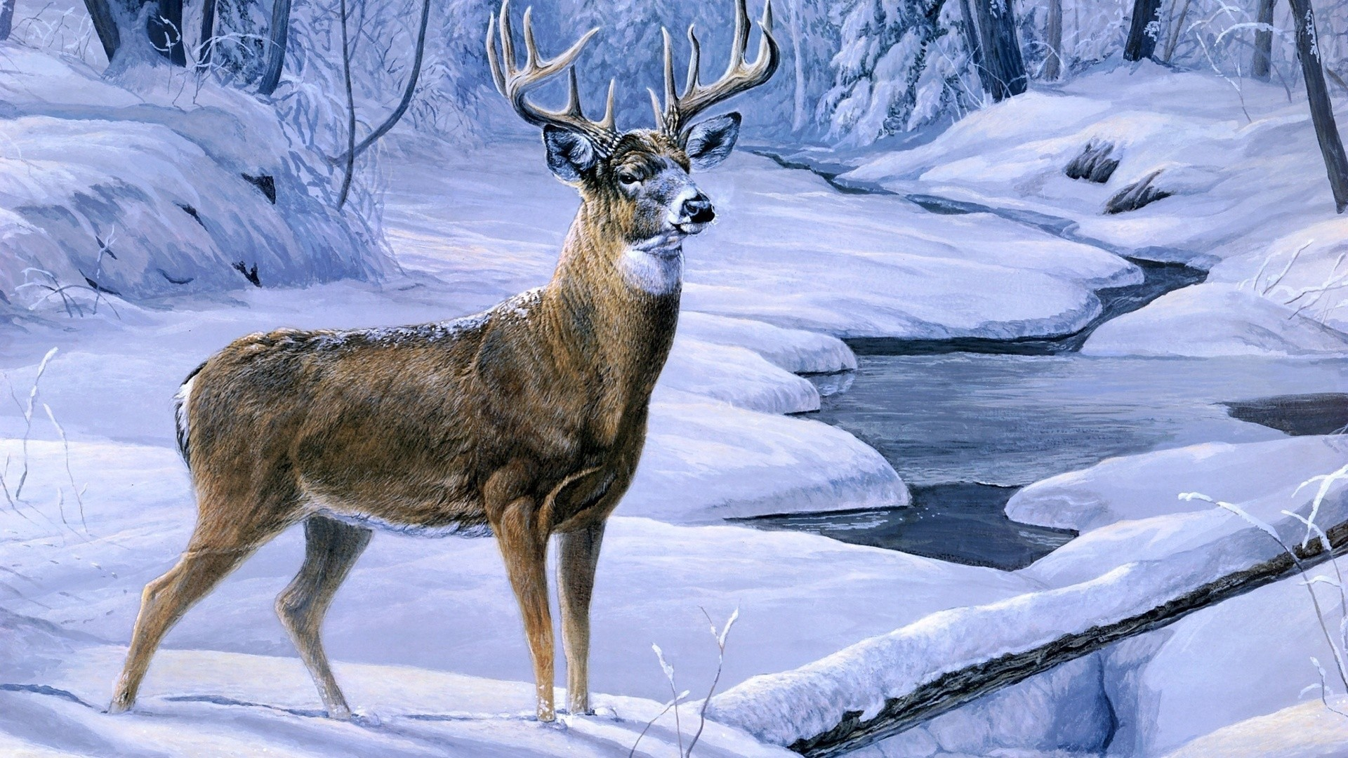 1920x1080 Hd Deer Hunting Wallpaper