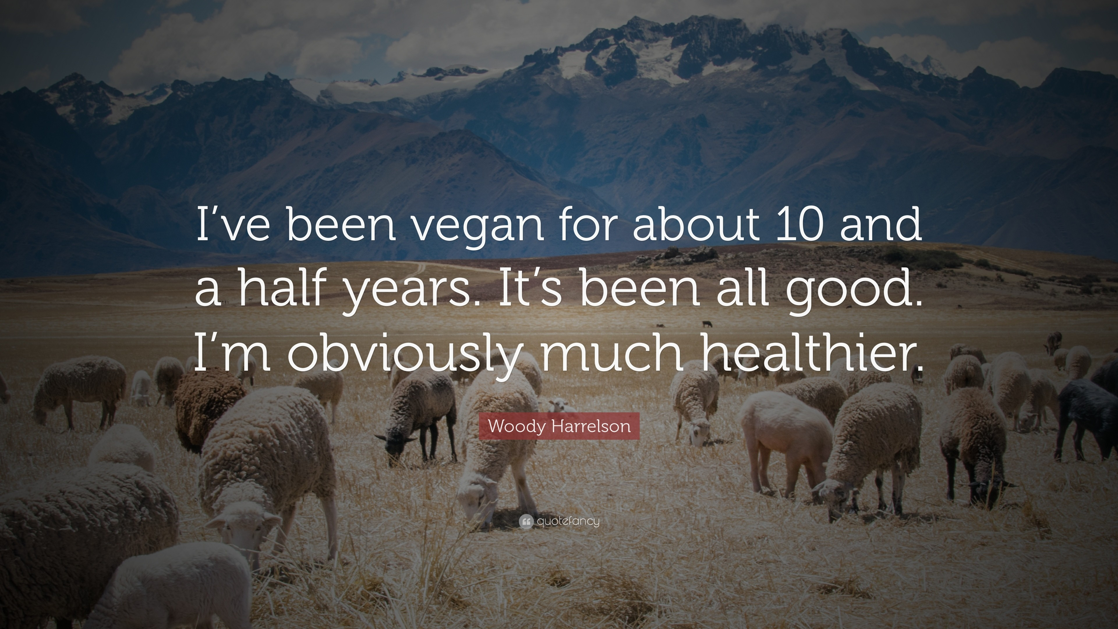"3840x2160 Woody Harrelson Quote: ""I've been vegan for about 10 and a half"
