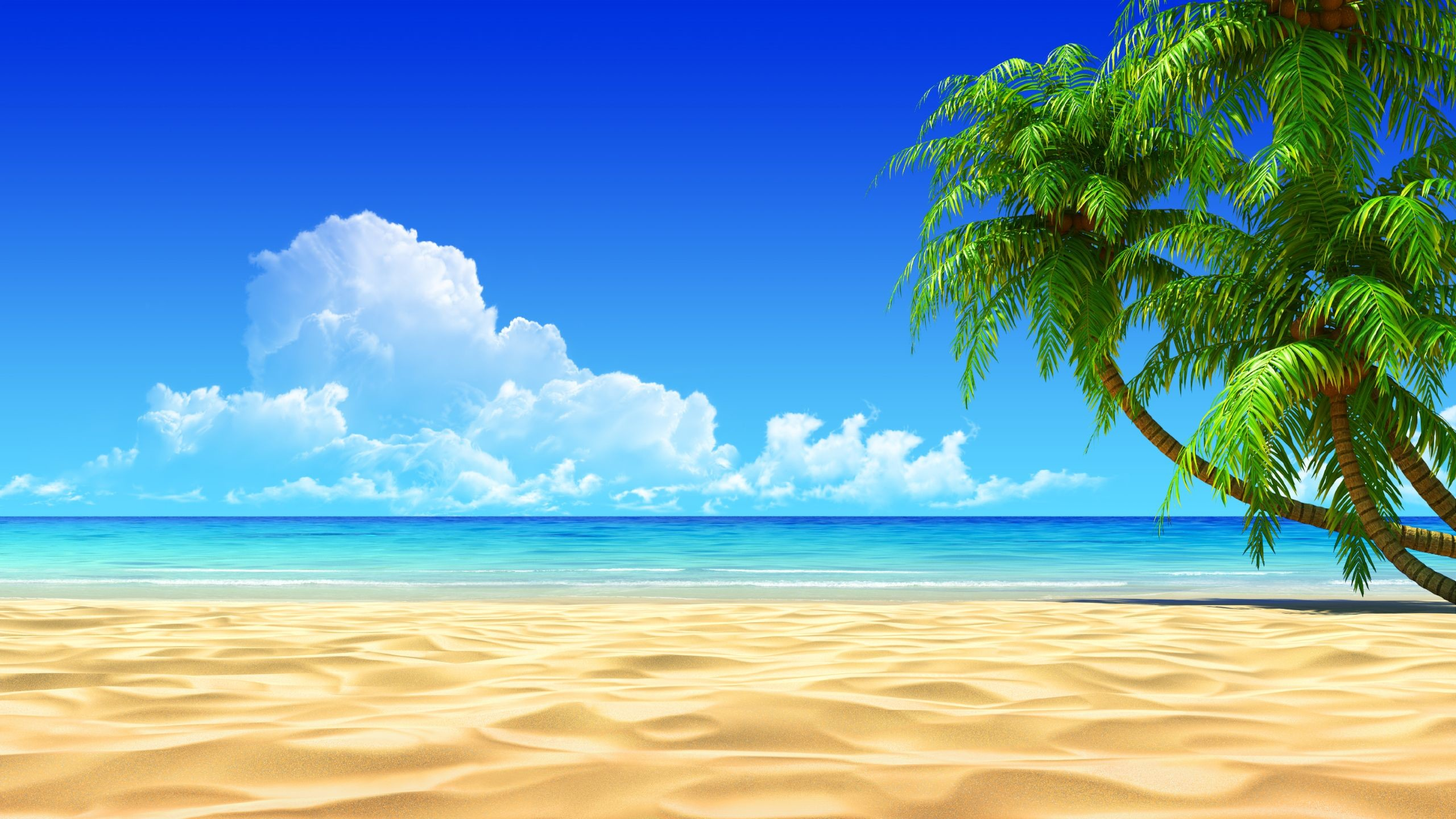 High Resolution Beach Scene Wallpaper 71 Images