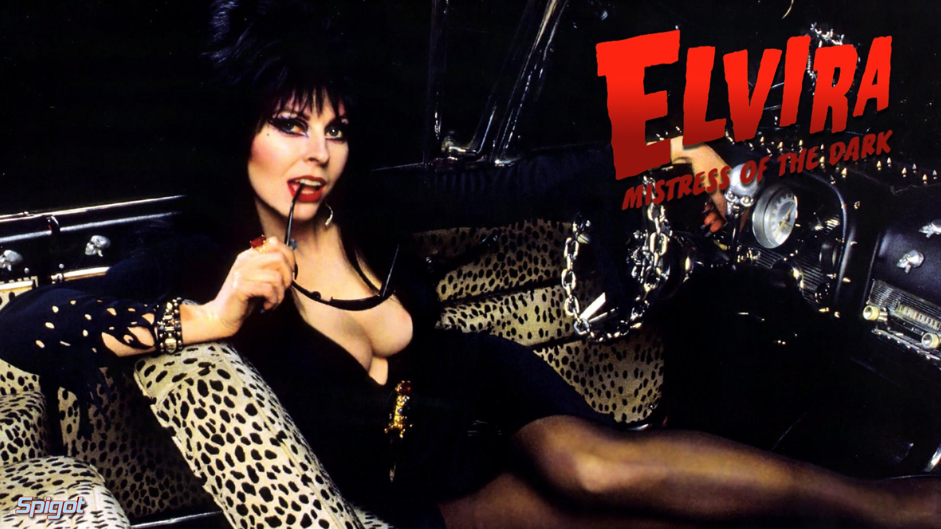 Elvira Mistress Of The Dark Wallpaper 78 Images