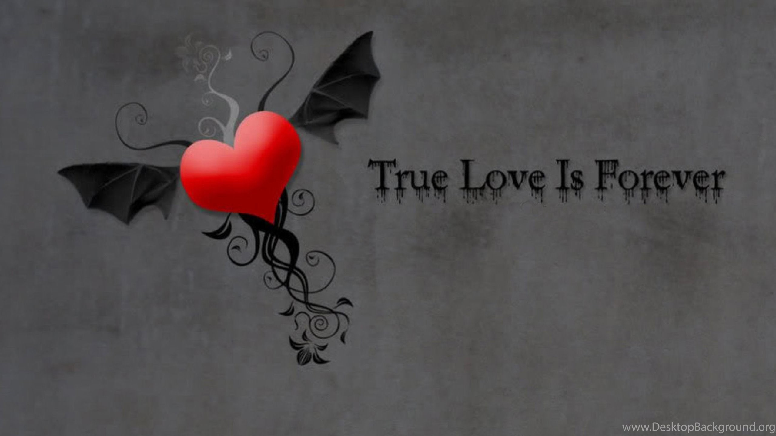 True Love Wallpaper (58+ images)