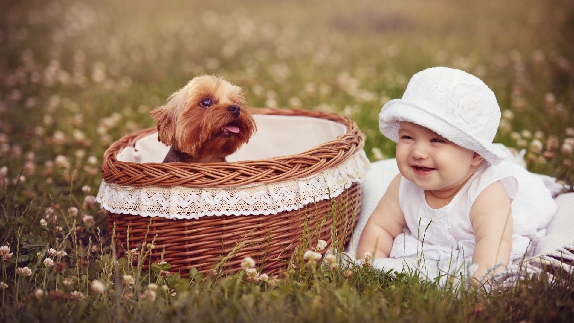1920x1080 Cute smiling baby with puppy in basket hd desktop wallpapers