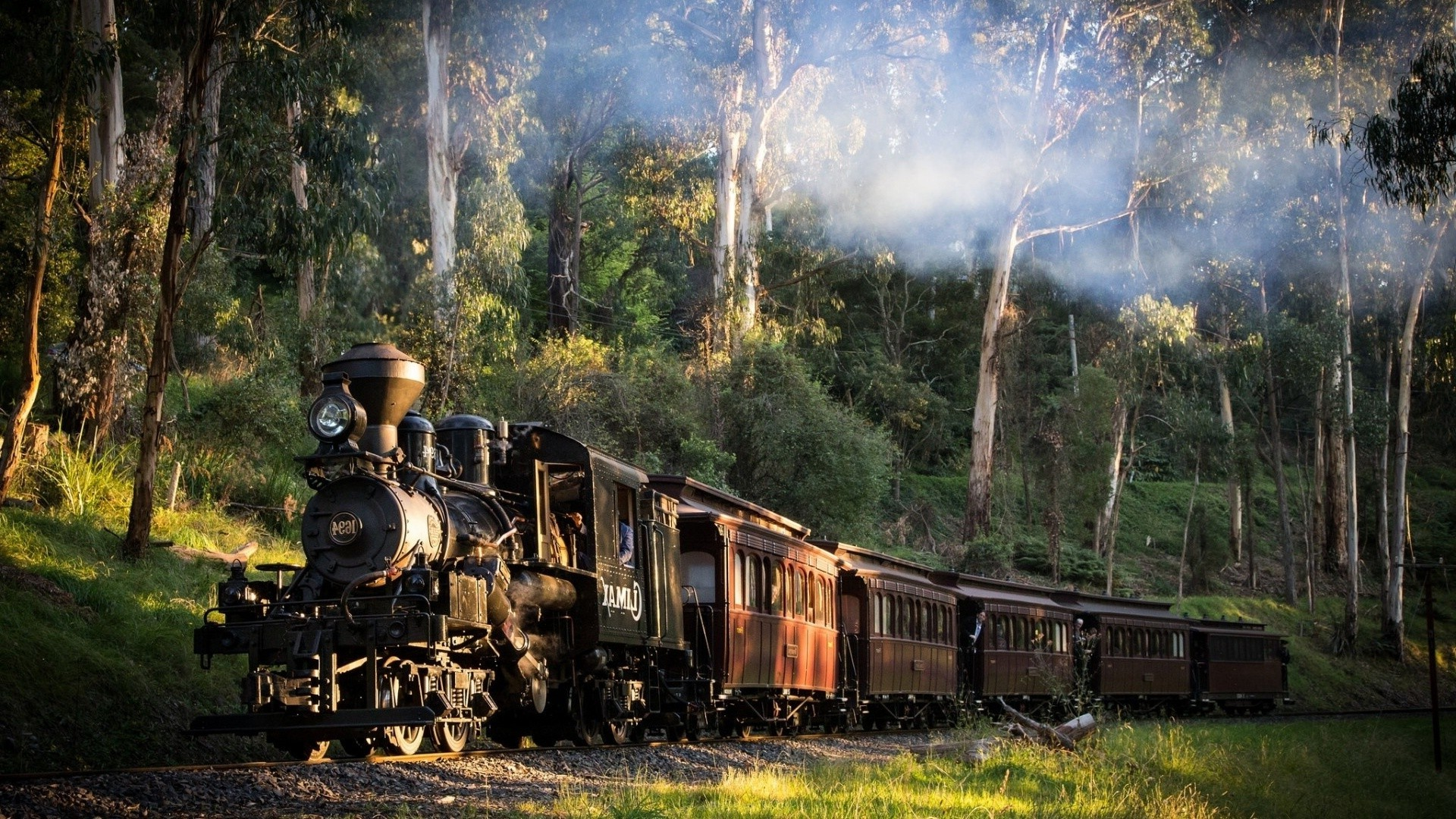 1920x1080 landscape, Train, Railway, Nature, Steam Locomotive, Australia, Trees,  Forest, Smoke, Grass, Sunlight Wallpapers HD / Desktop and Mobile  Backgrounds