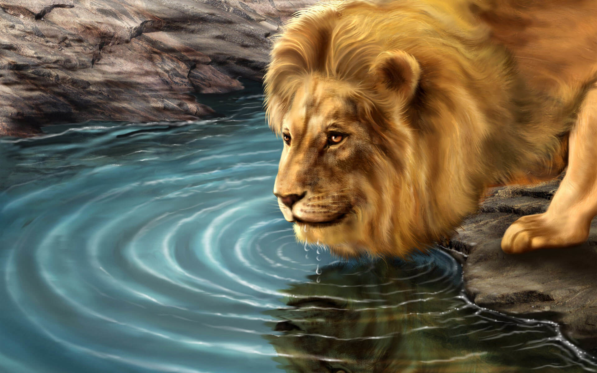 Colorful Lion Wallpaper (57+ Images