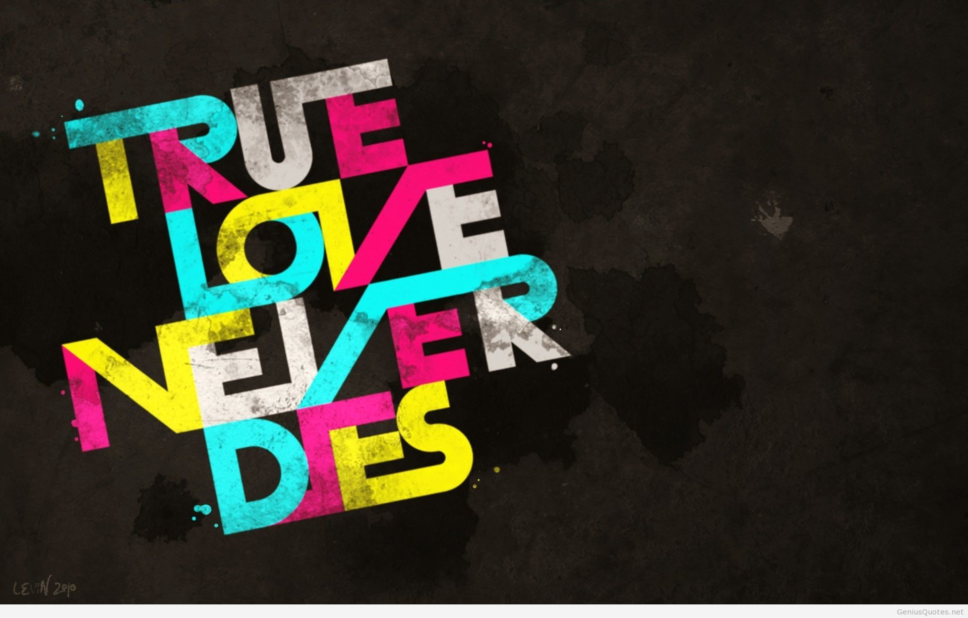 1920x1227 True love quote wallpaper HD