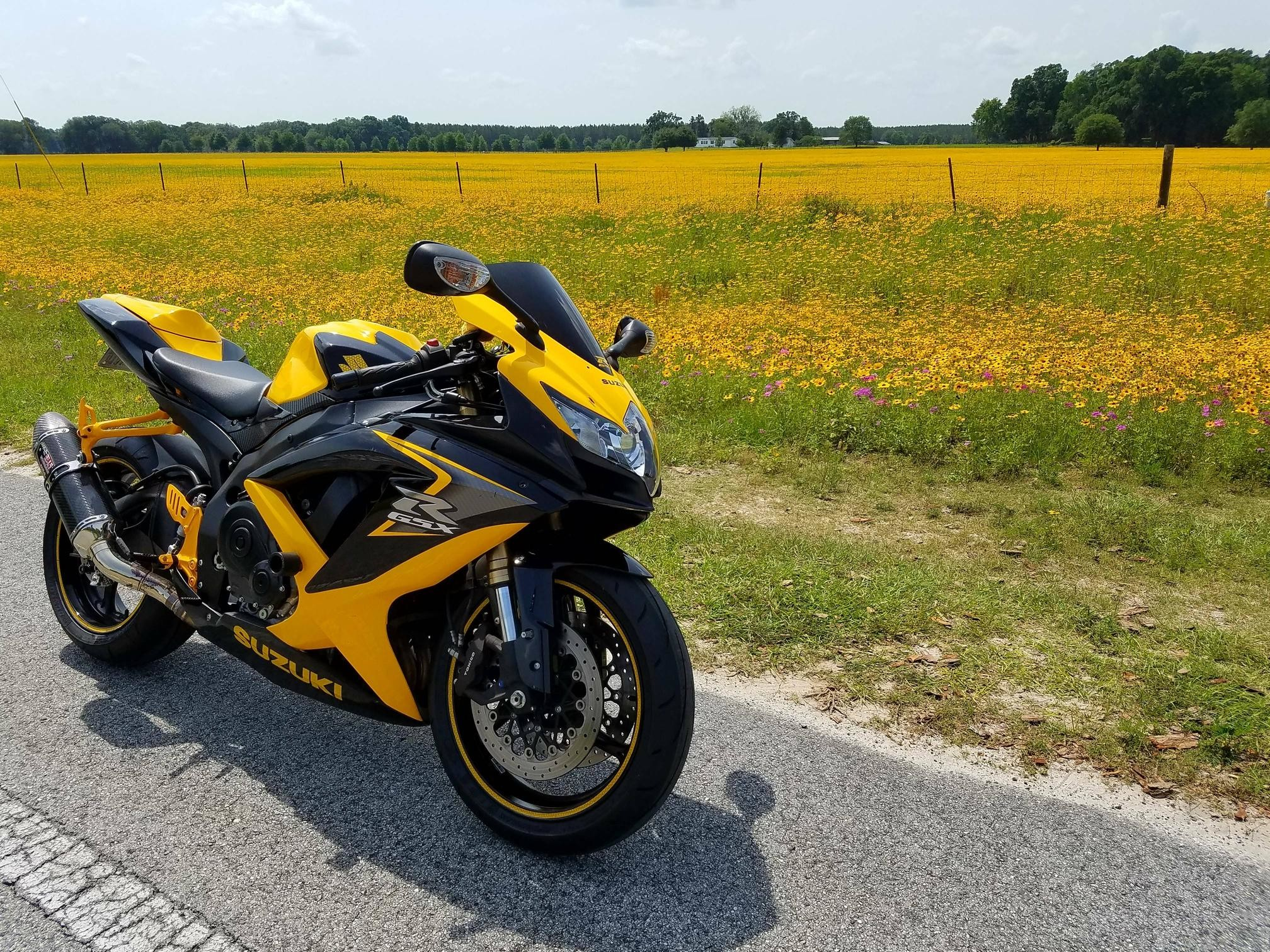 Suzuki Gsxr  Yellow