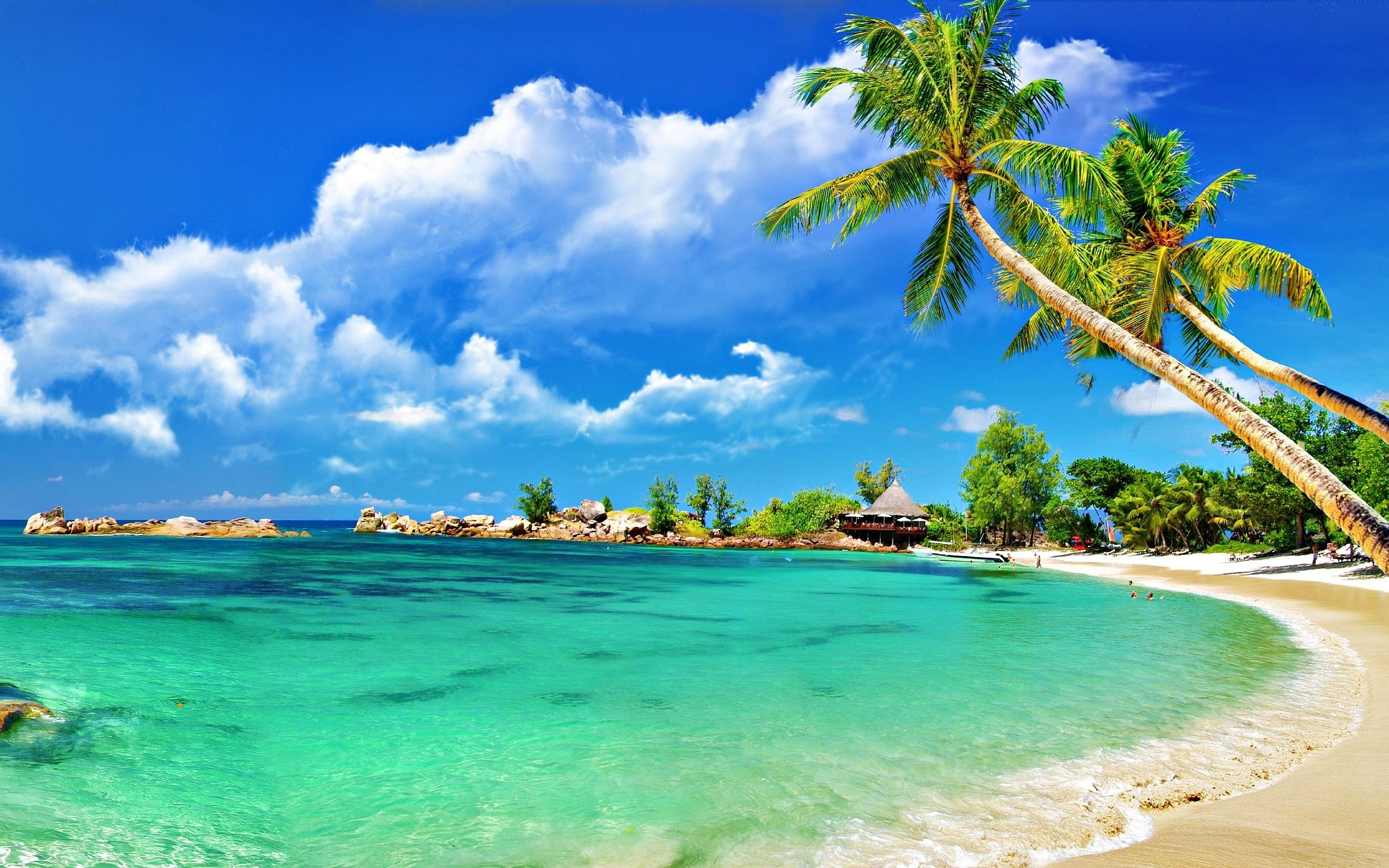 2560x1600 caribbean beach desktop wallpaper - Beach is the best place for enjoyment  It is a place