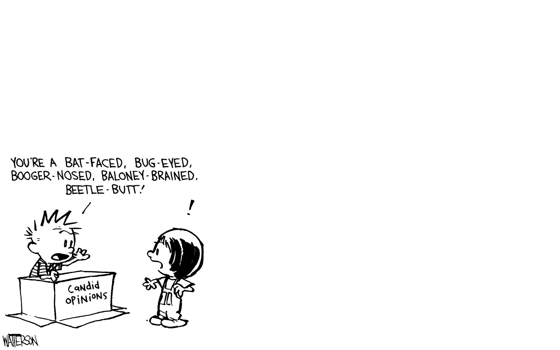 1920x1200 kracauer blizzard of images the disaster artist images of adam. Calvin &  Hobbes ...