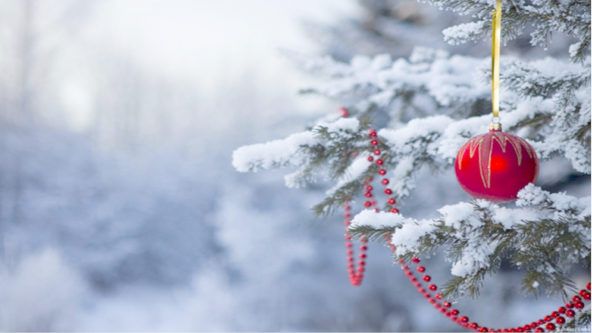 Xmas Wallpapers (66+ Images